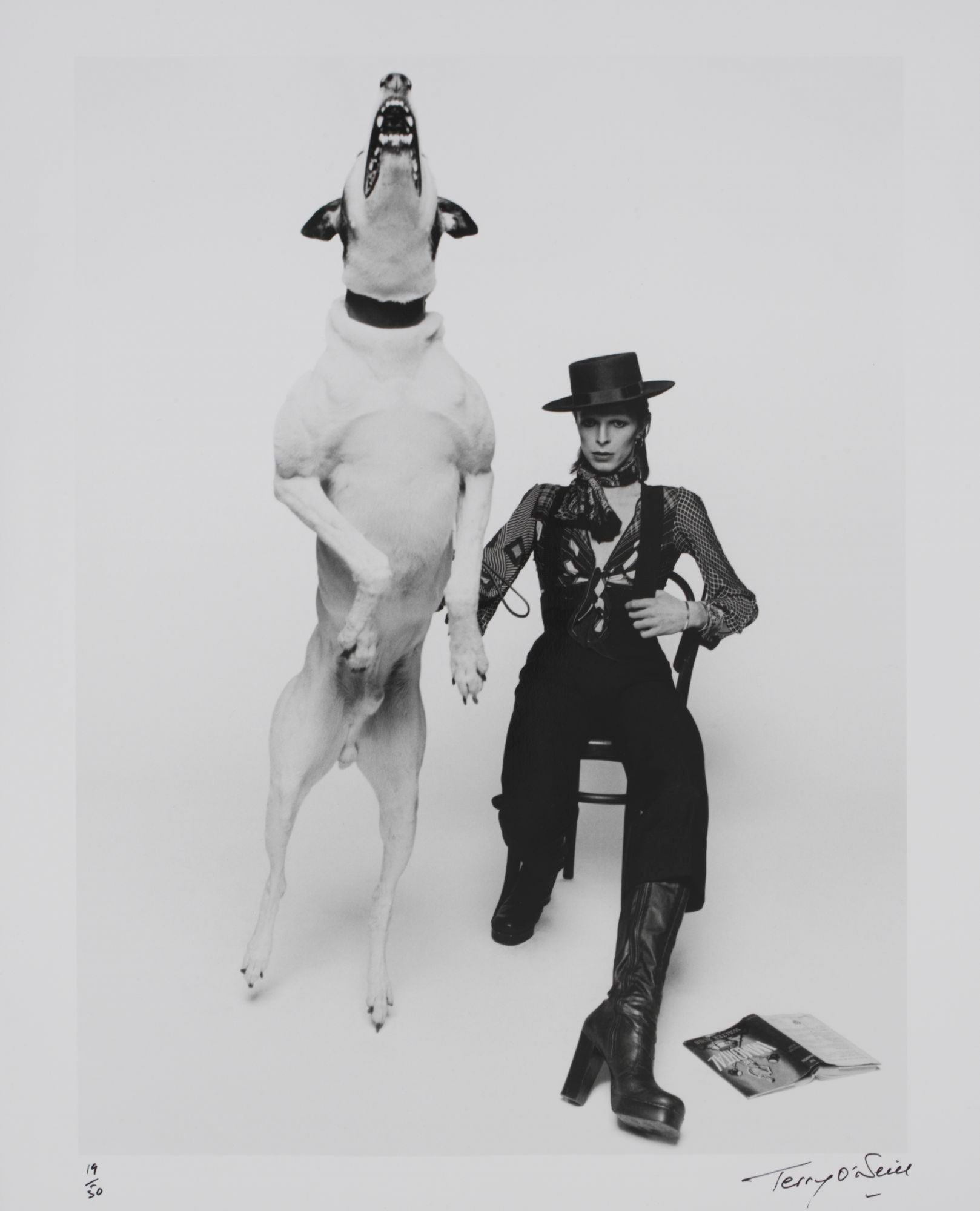 Promotional-photograph-of-David-Bowie-for-'Diamond-Dogs,'-1974