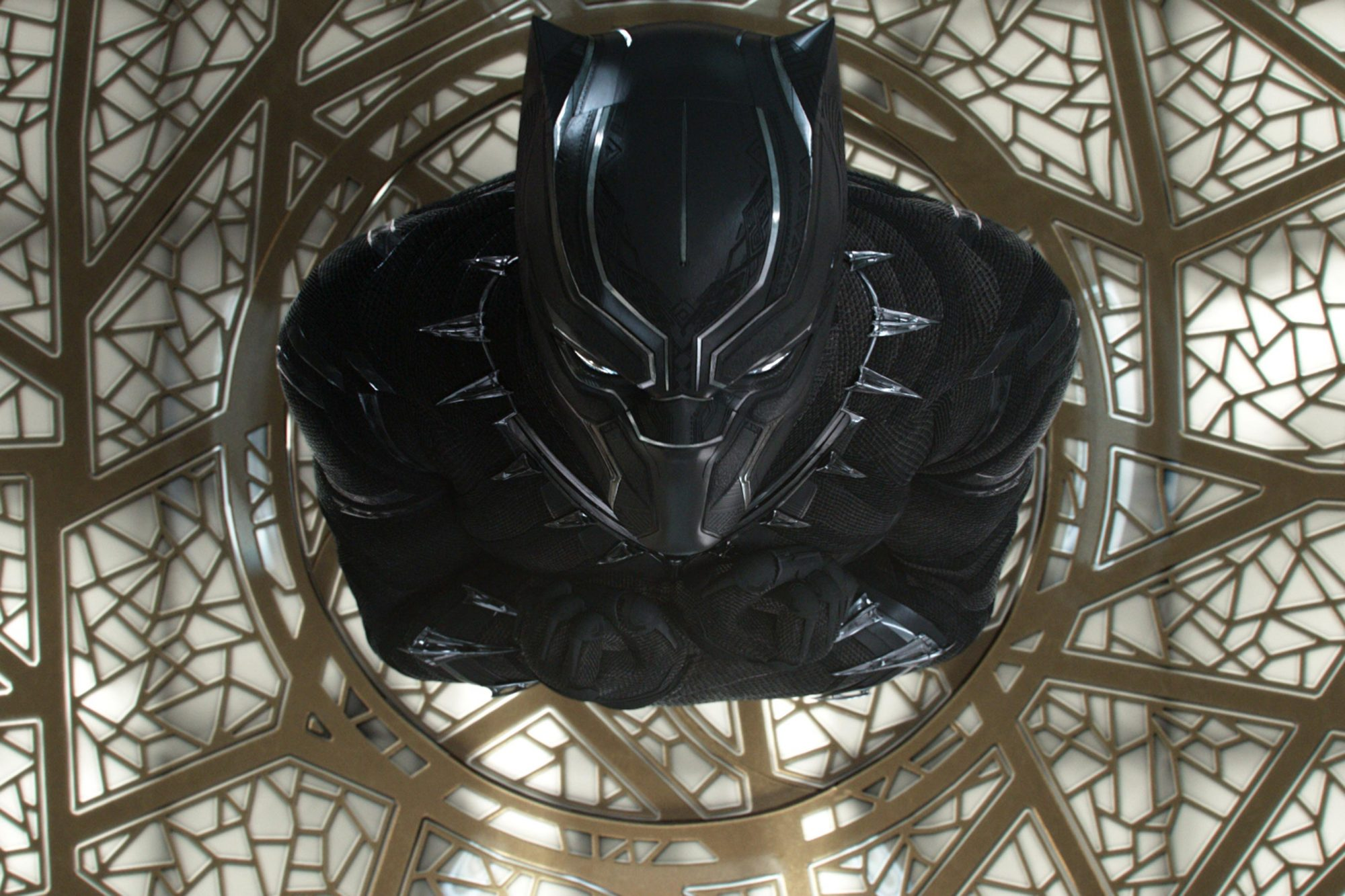 BlackPanther5a68e75382504