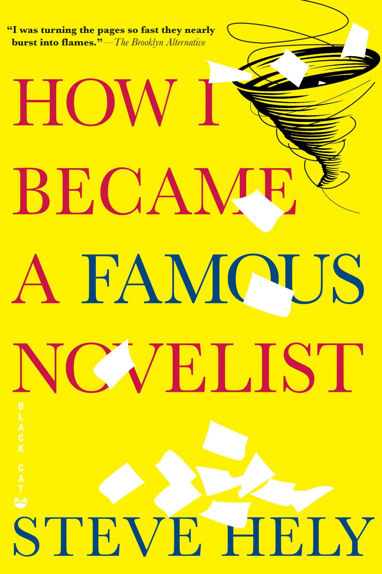 how-I-became-a-famous-novelist