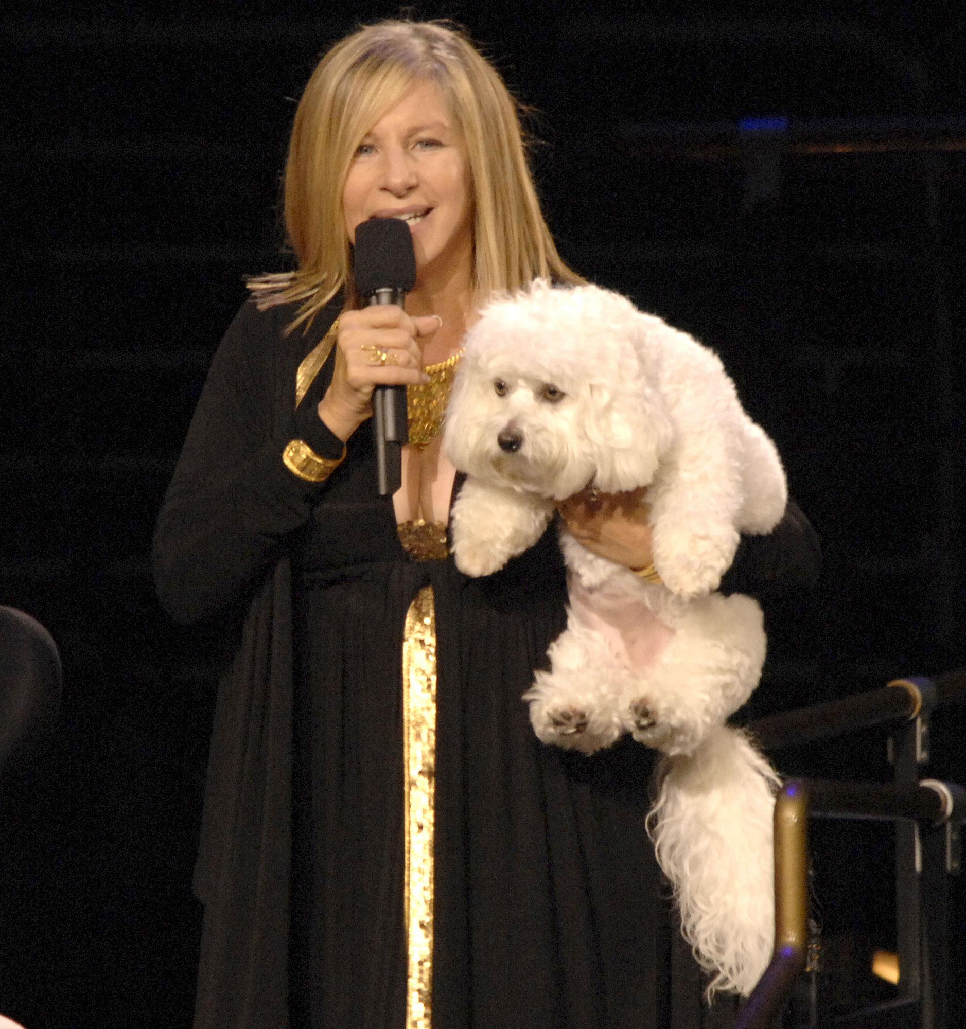 Barbra-Streisand-Sammie-2