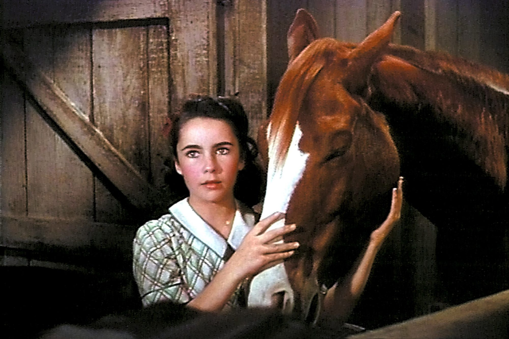 Velvet Brown (National Velvet, 1944)