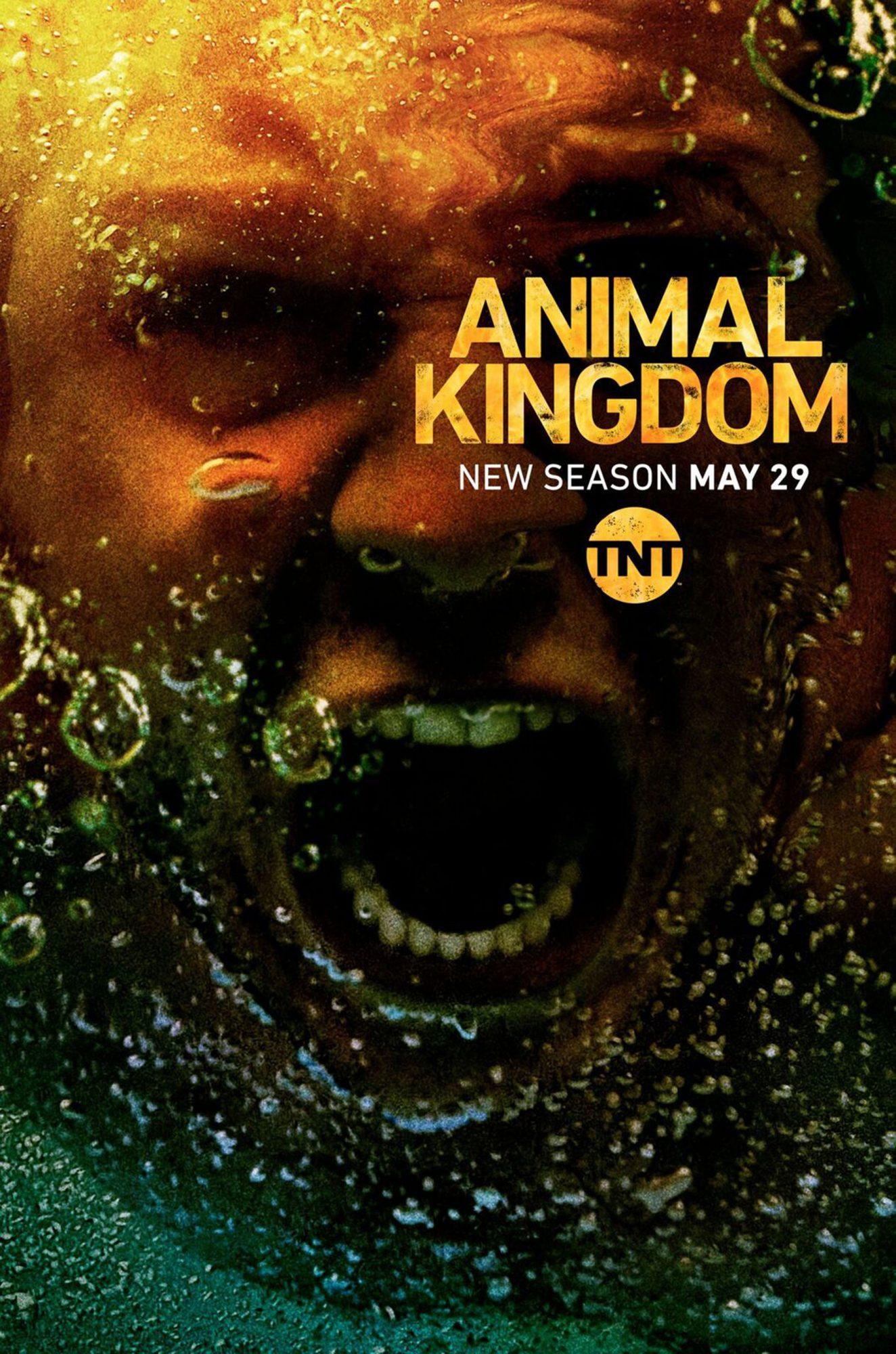 28_V1987_AnimalKingdomS3_Techwood_18_3x12_1_w4_FIN01_toTrim_preview