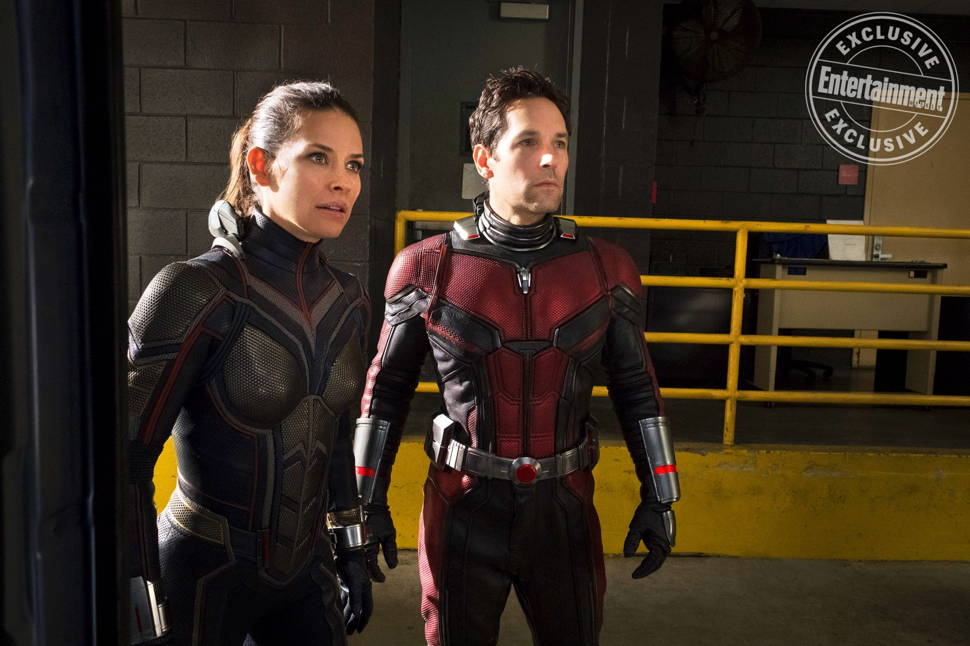Ant-man-wasp_378632943029432