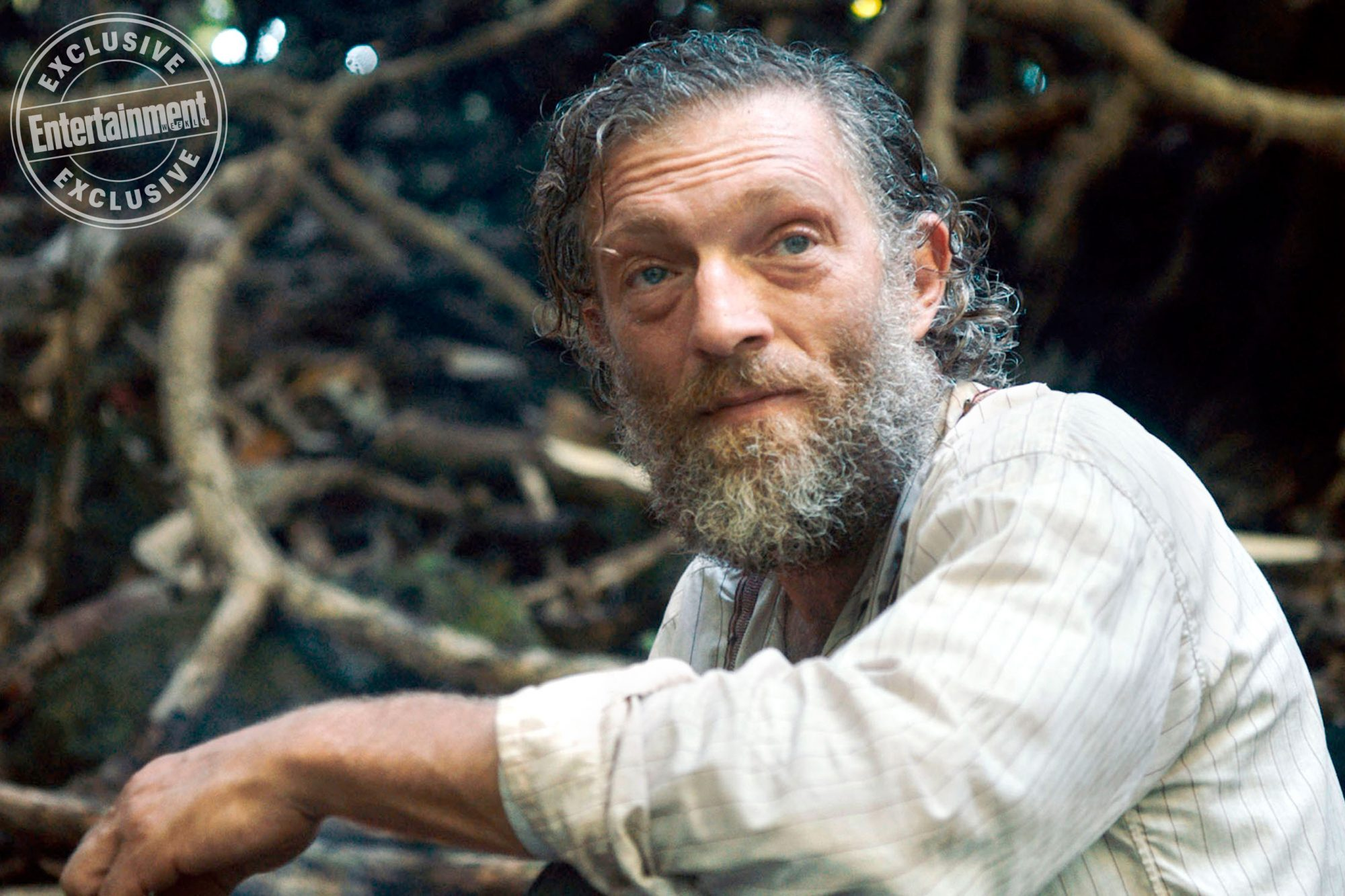 Gauguin: Voyage To Tahiti Vincent Cassell