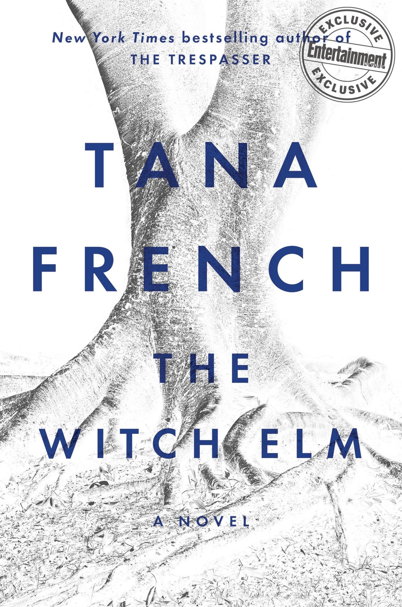 The Witch Elm by Tana French CR: Penguin Random House