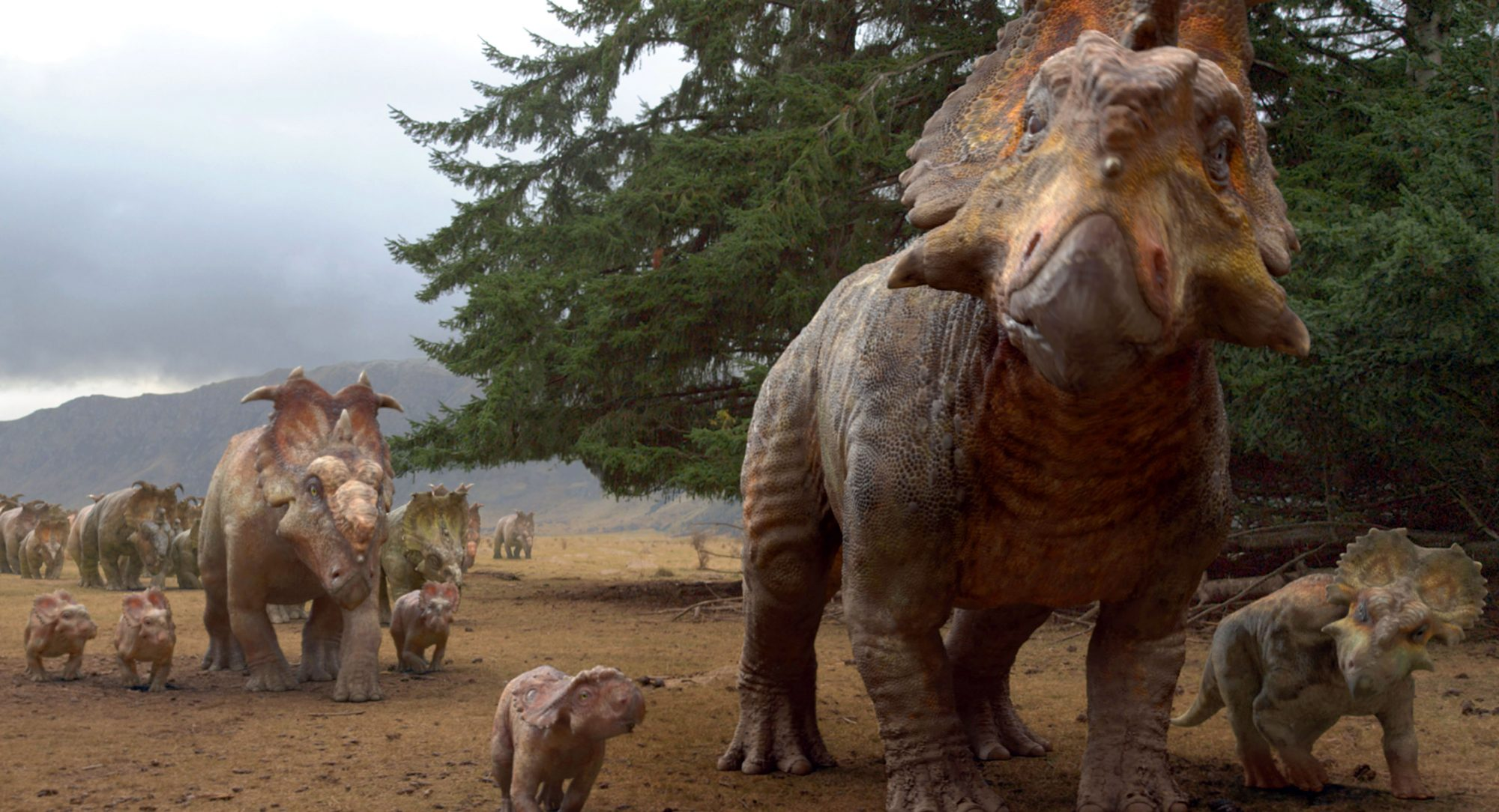 WALKING WITH DINOSAURS 3D, Triceratops, 2013, TM and Copyright ©20th Century Fox Film Corp. All righ