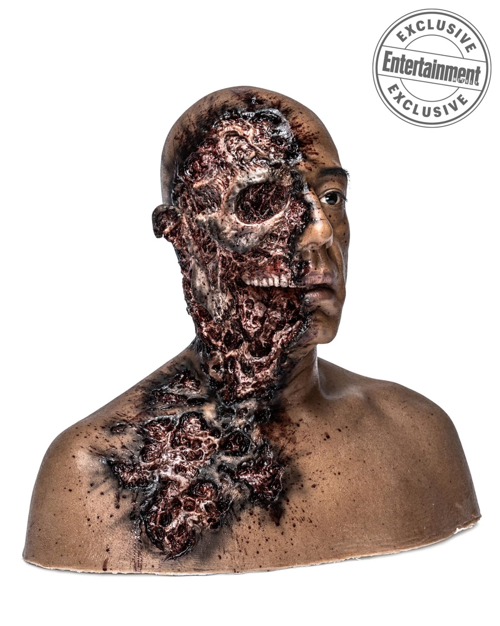 The half-bombed head of Gustavo Fring
