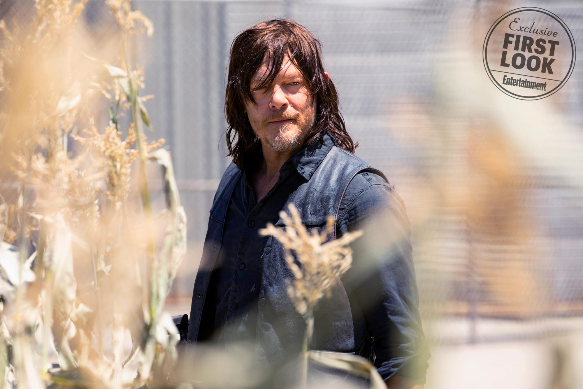 The Walking DeadPictured: Norman Reedus