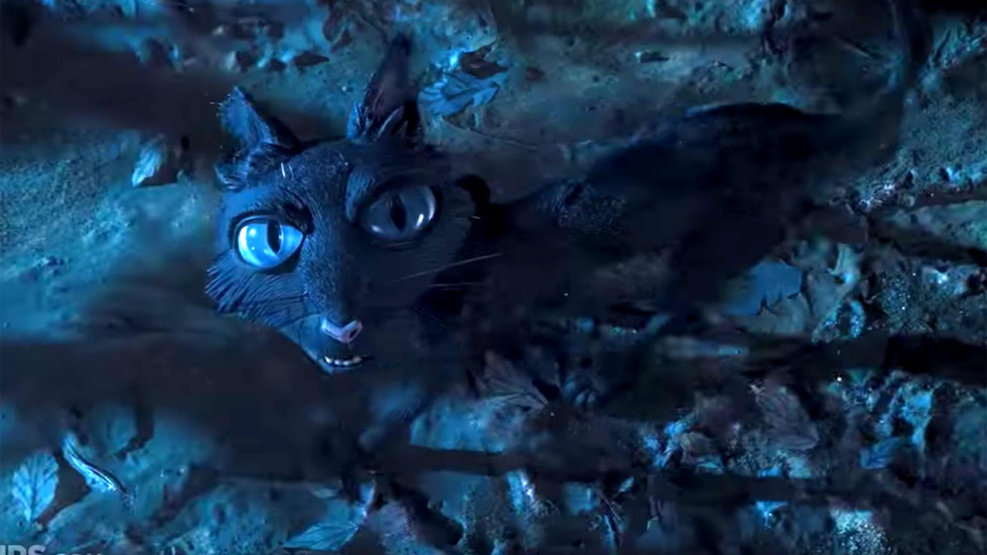 The 25 Most Iconic Movie Cats Ew Com