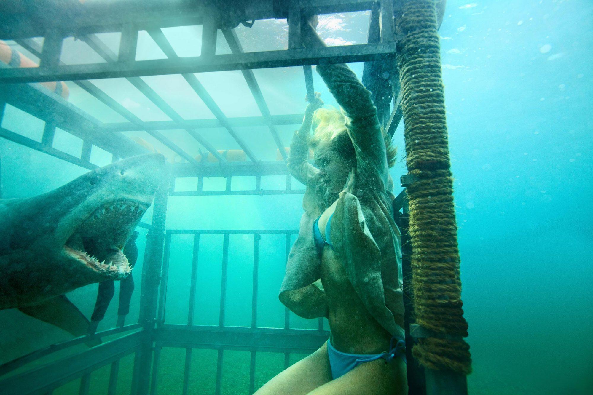 SHARK NIGHT 3D, Sara Paxton, 2011.  ph: Steve Dietl/©Relativity Media/courtesy Everett Collection