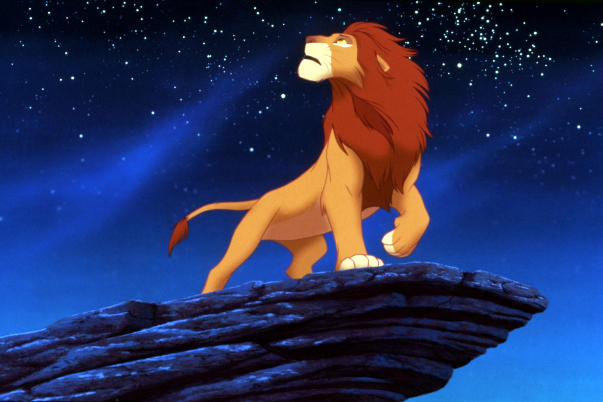 THE LION KING, Simba, 1994, (c)Buena Vista Pictures/courtesy Everett Collection