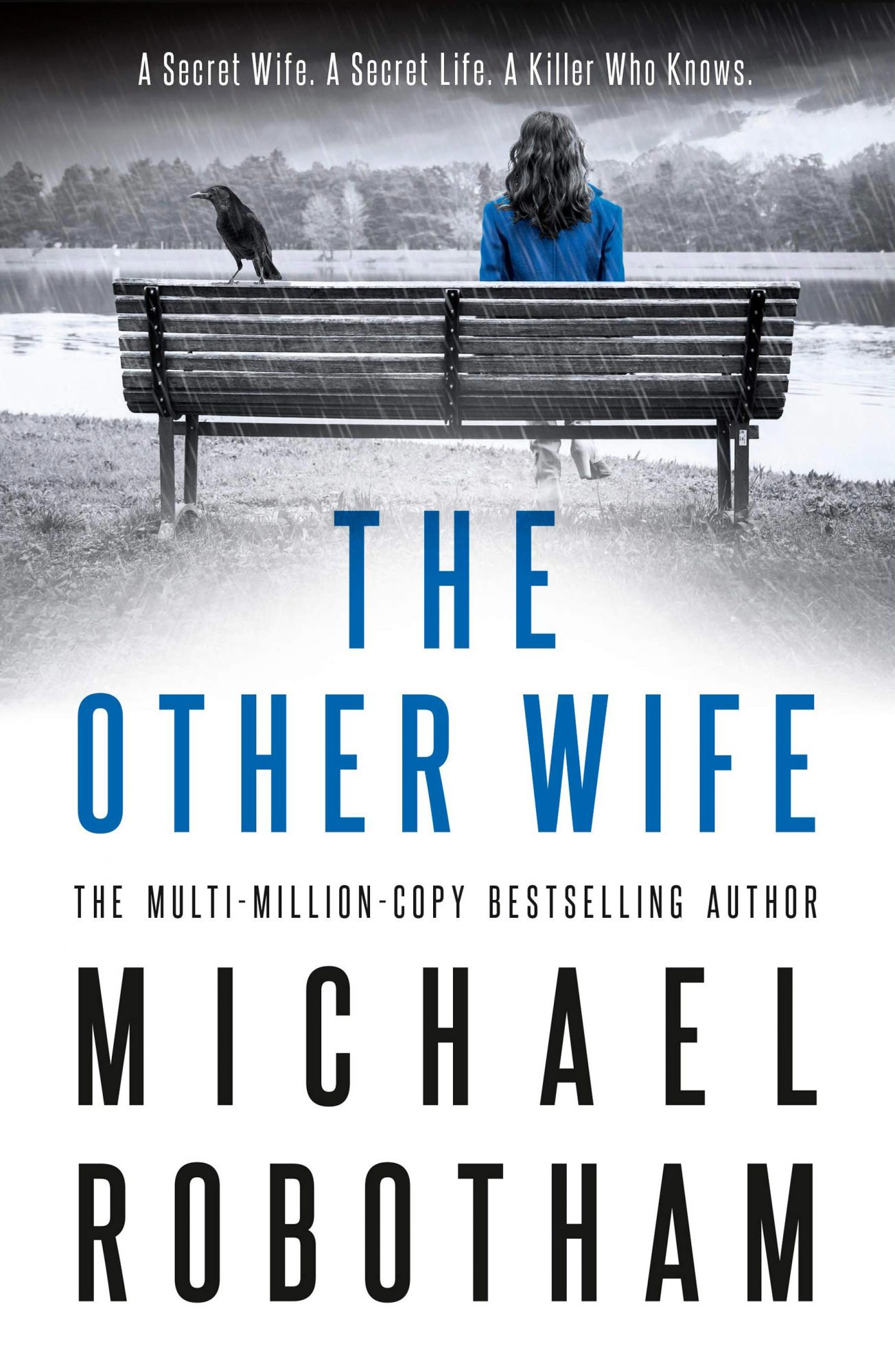 The Other Wife by Michael RobothamCredit: Sphere