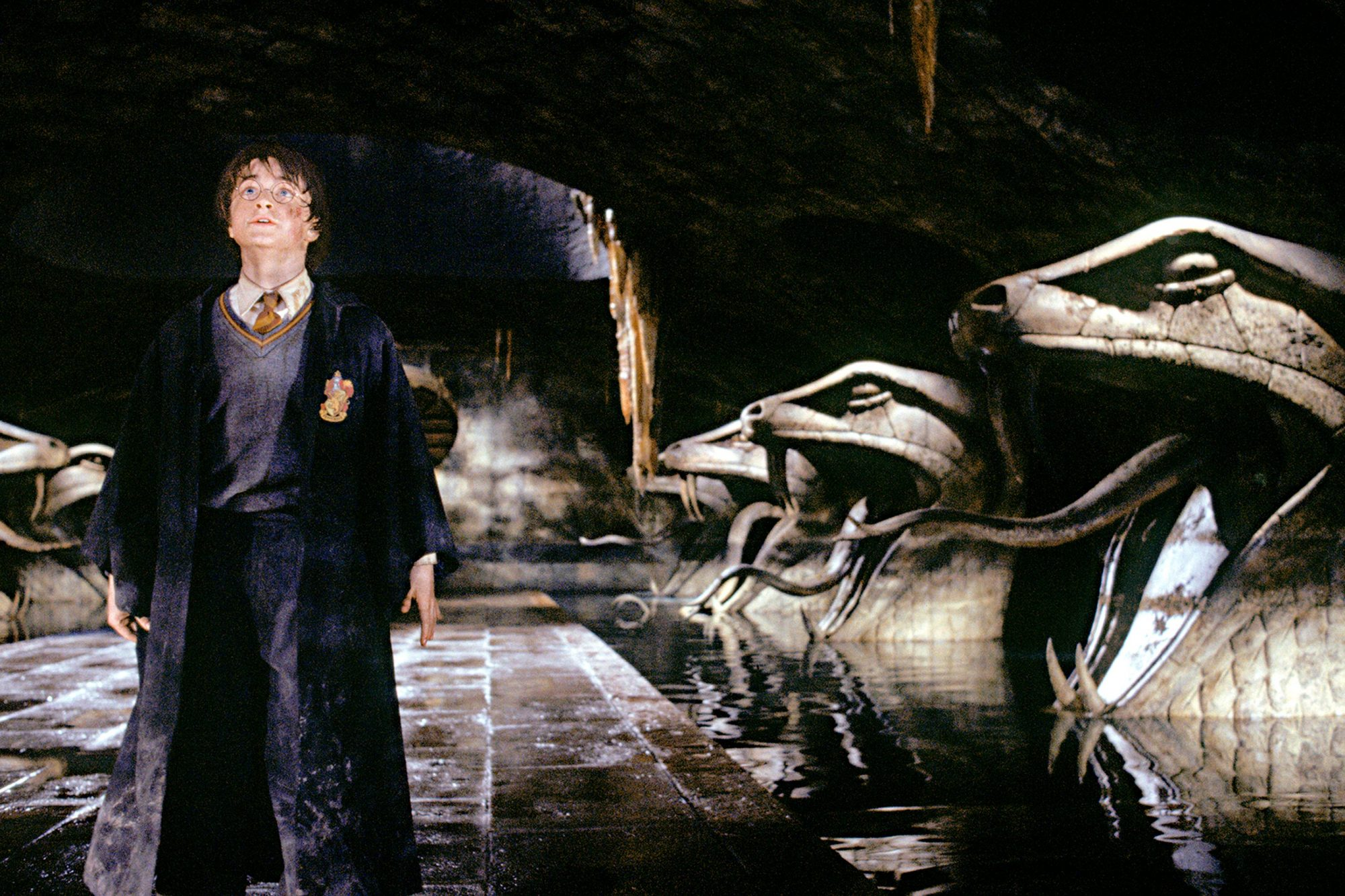 Harry Potter and the Chamber of SecretsHarry Potter (DANIEL RADCLIFFE)