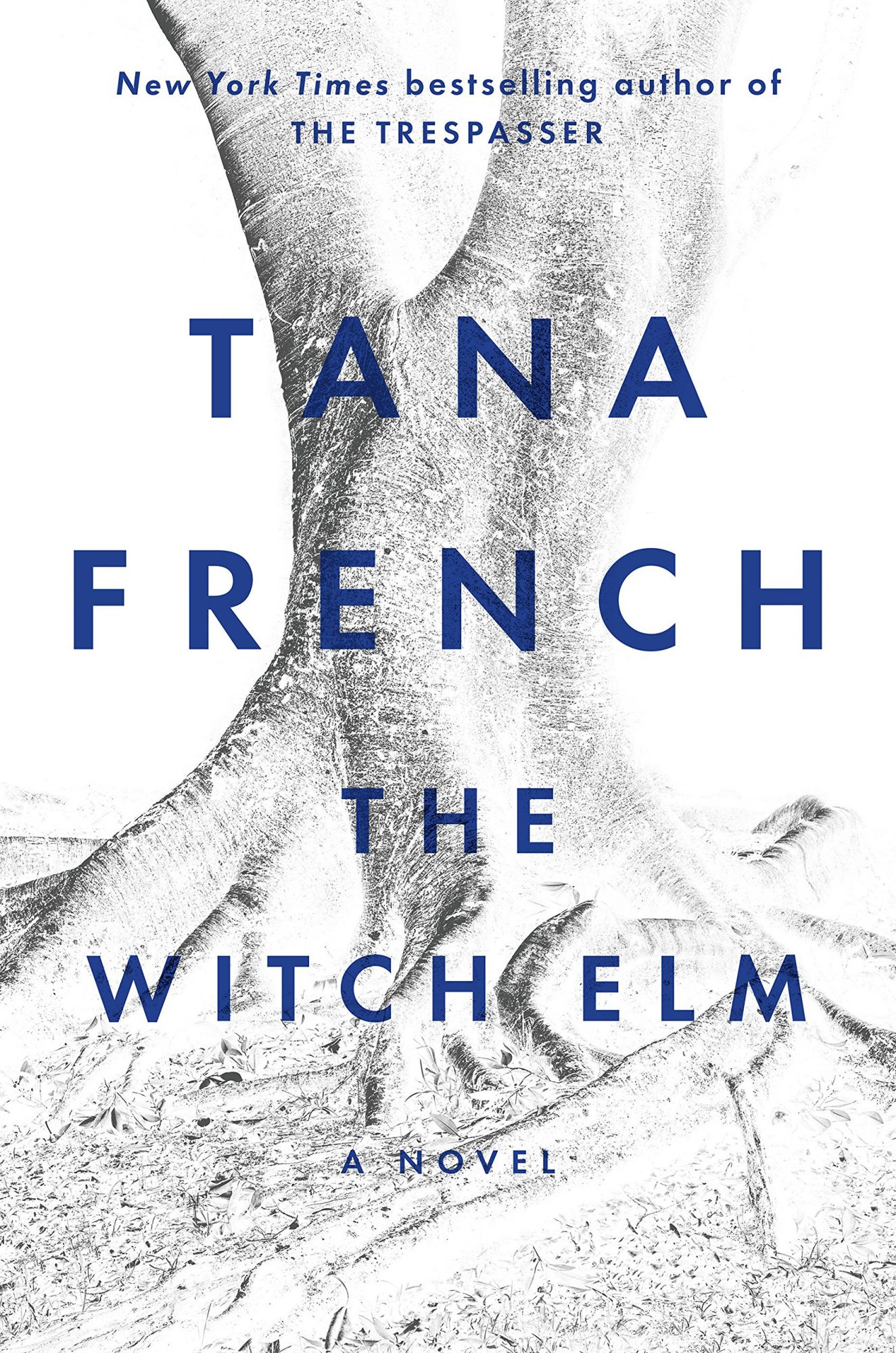 Tana French, The Witch Elm CR: Viking