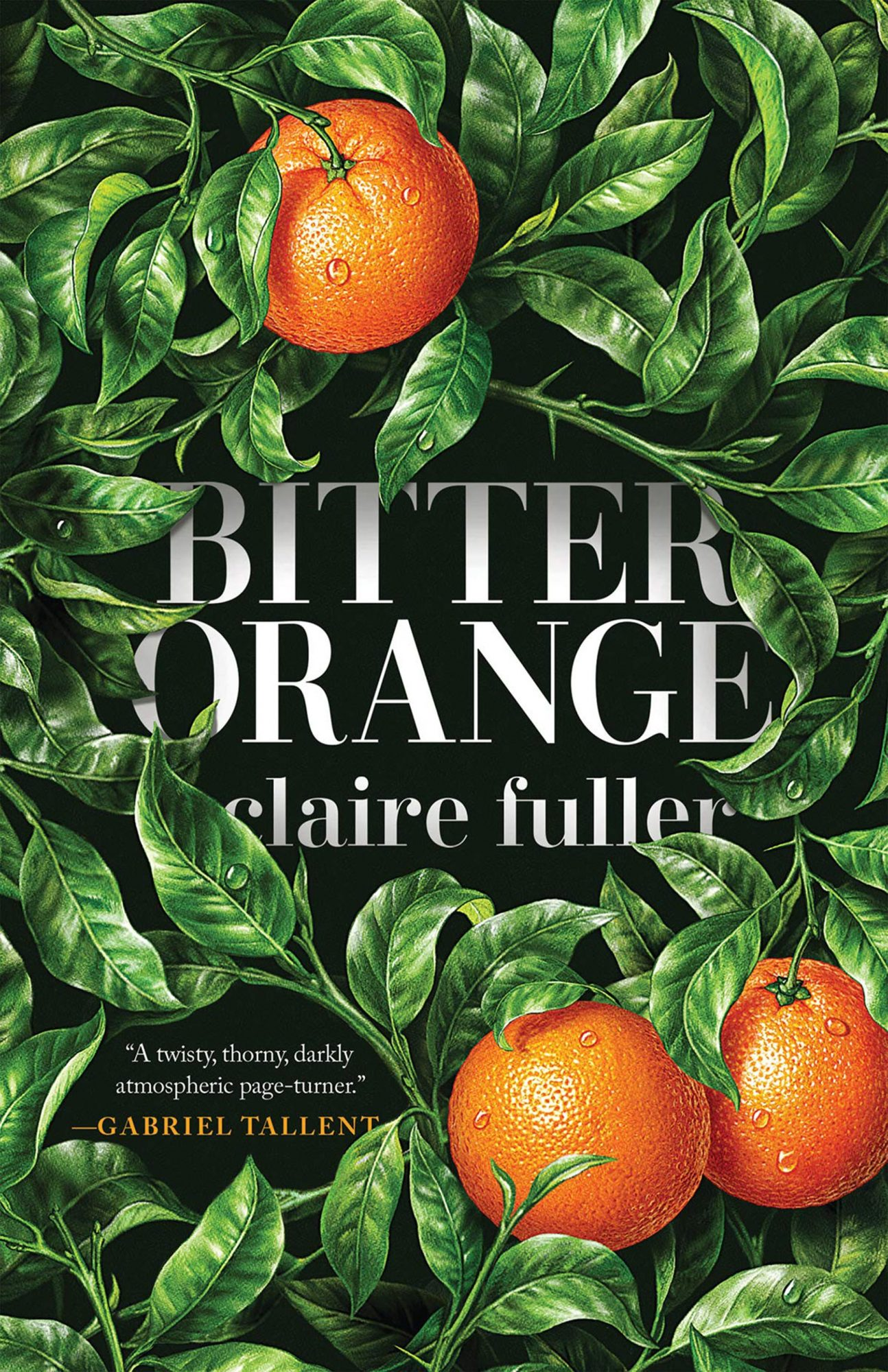 Bitter Orange by Claire FullerCredit: Tin House Books