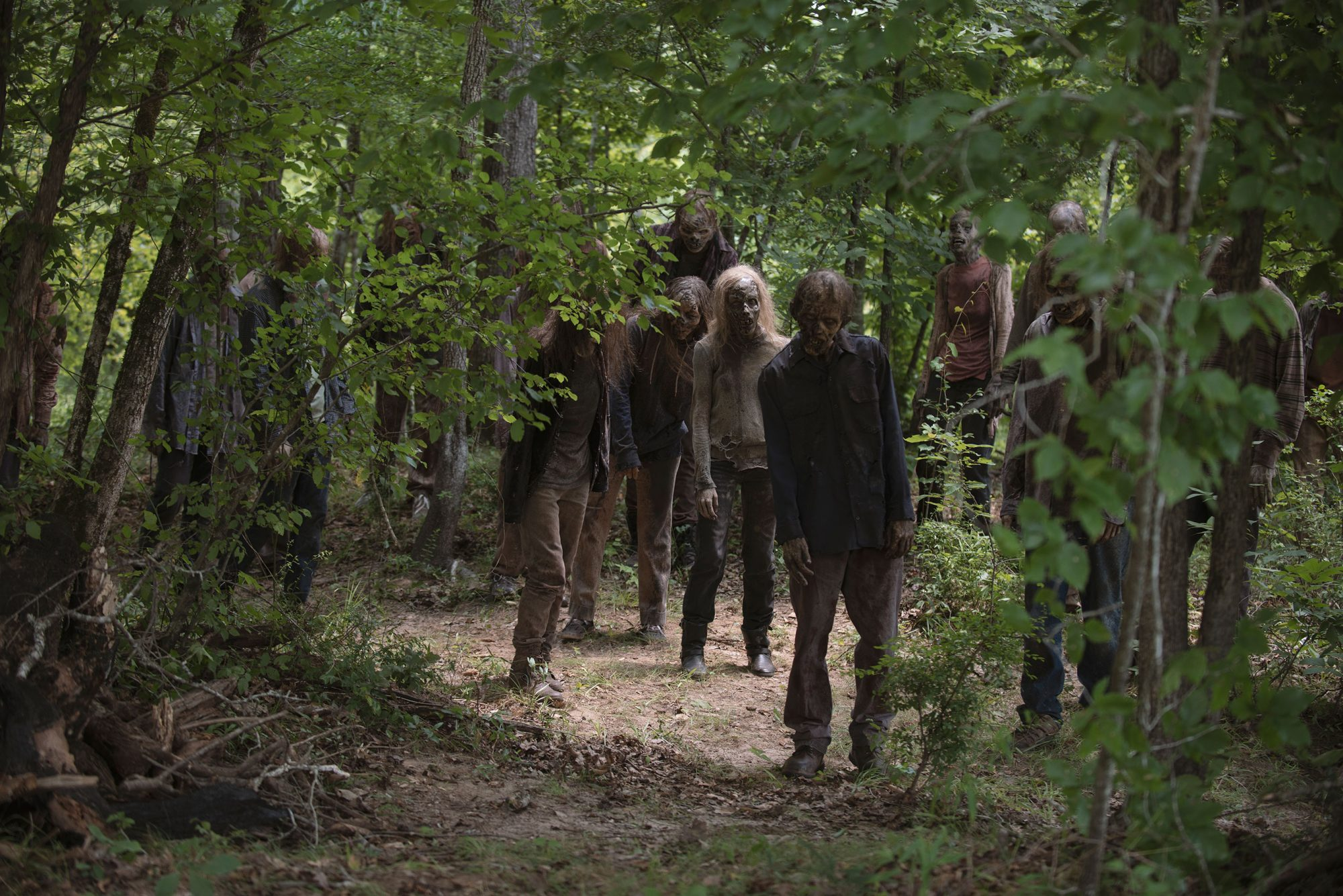 - The Walking Dead _ Season 9, Episode 5 - Photo Credit: Gene Page/AMC