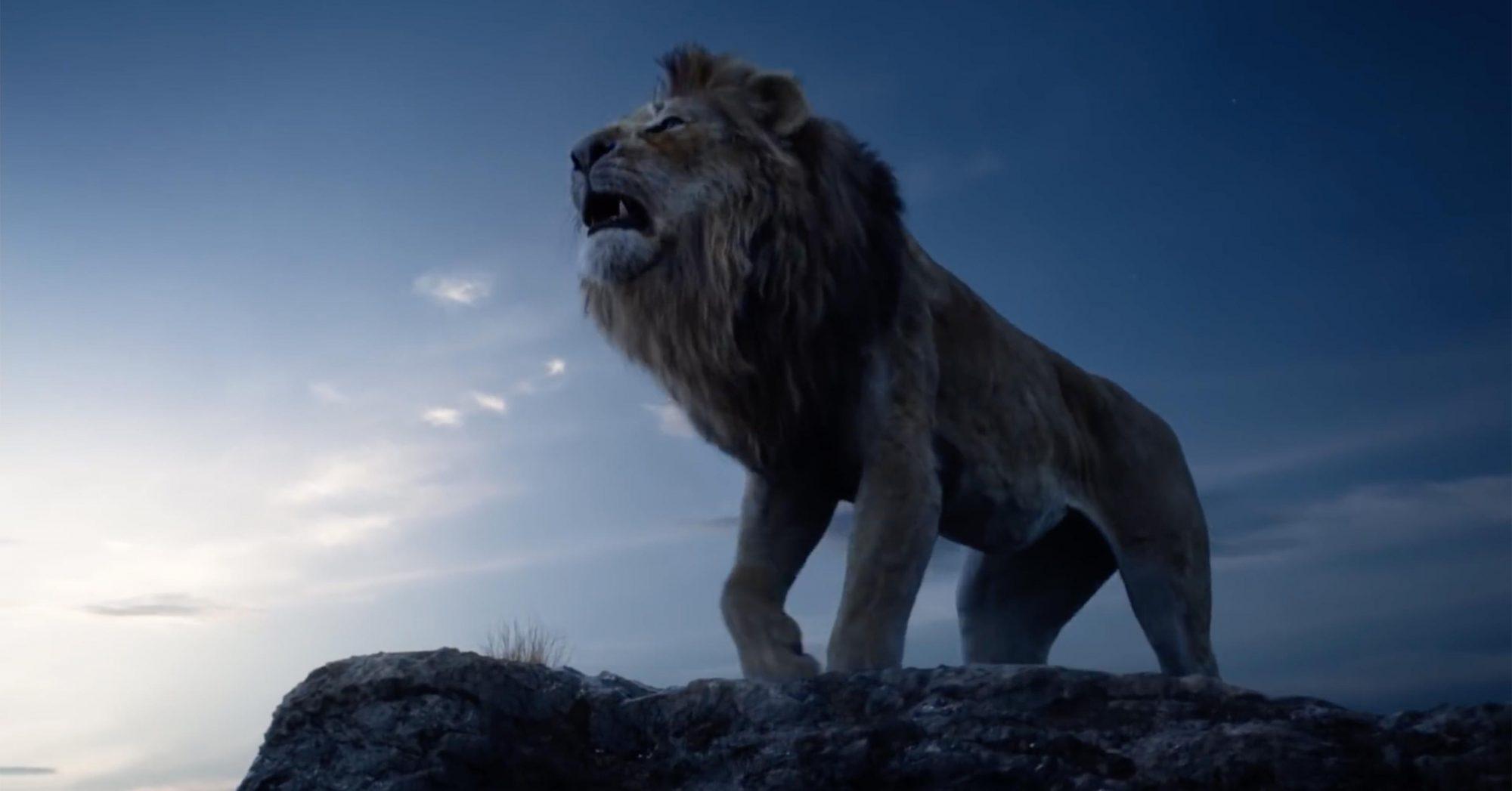 Lion-King5
