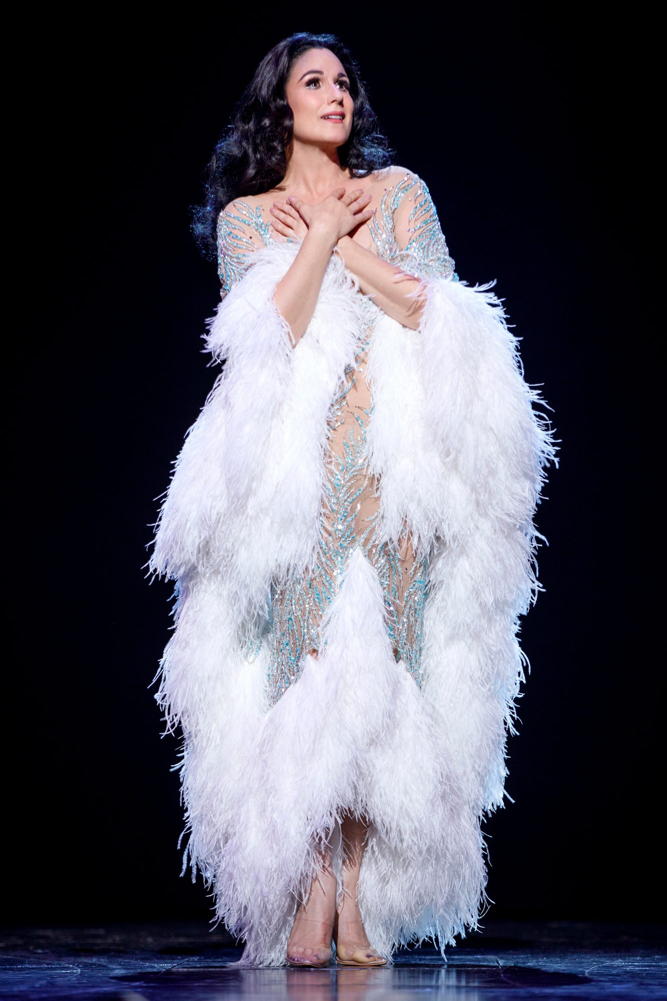 The Cher ShowDirected By Jason MooreBook By Rick Elice
