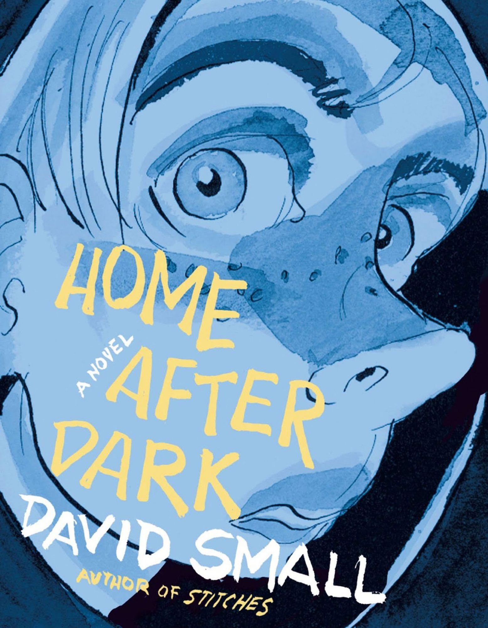 Home After Dark by David SmallCR: Liveright