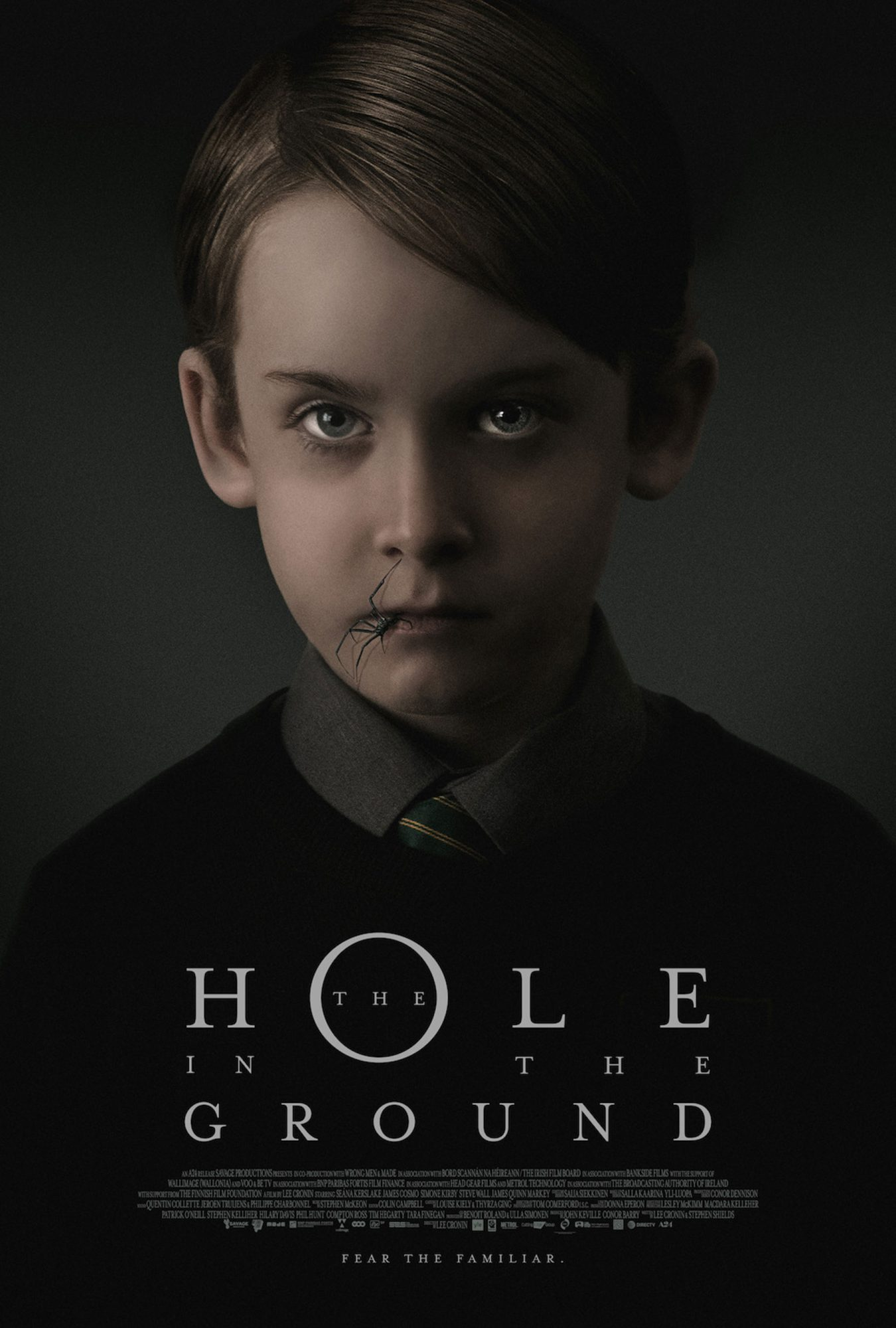 The Hole In The Ground movie posterCourtesy of Sundance Institute