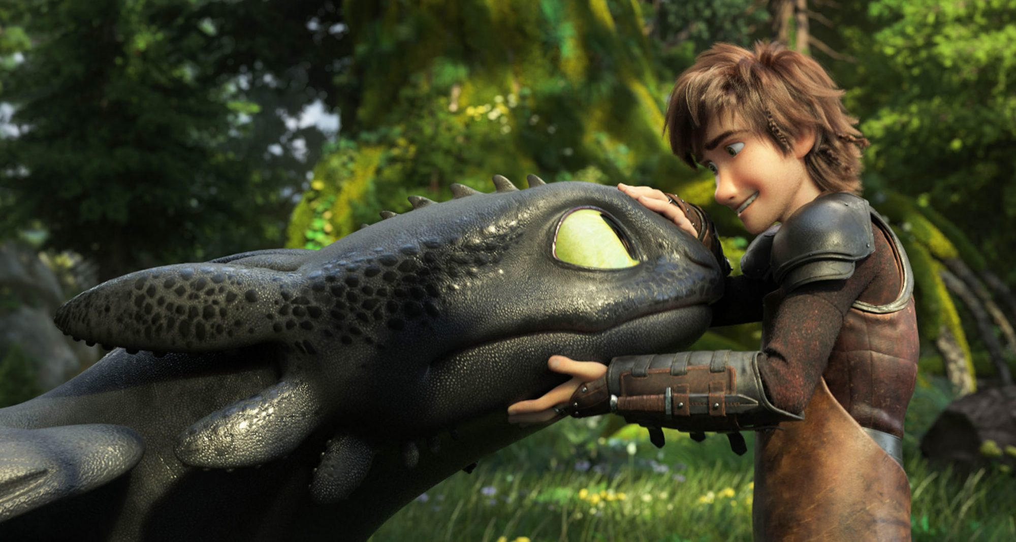 Film Title: How to Train Your Dragon: The Hidden World