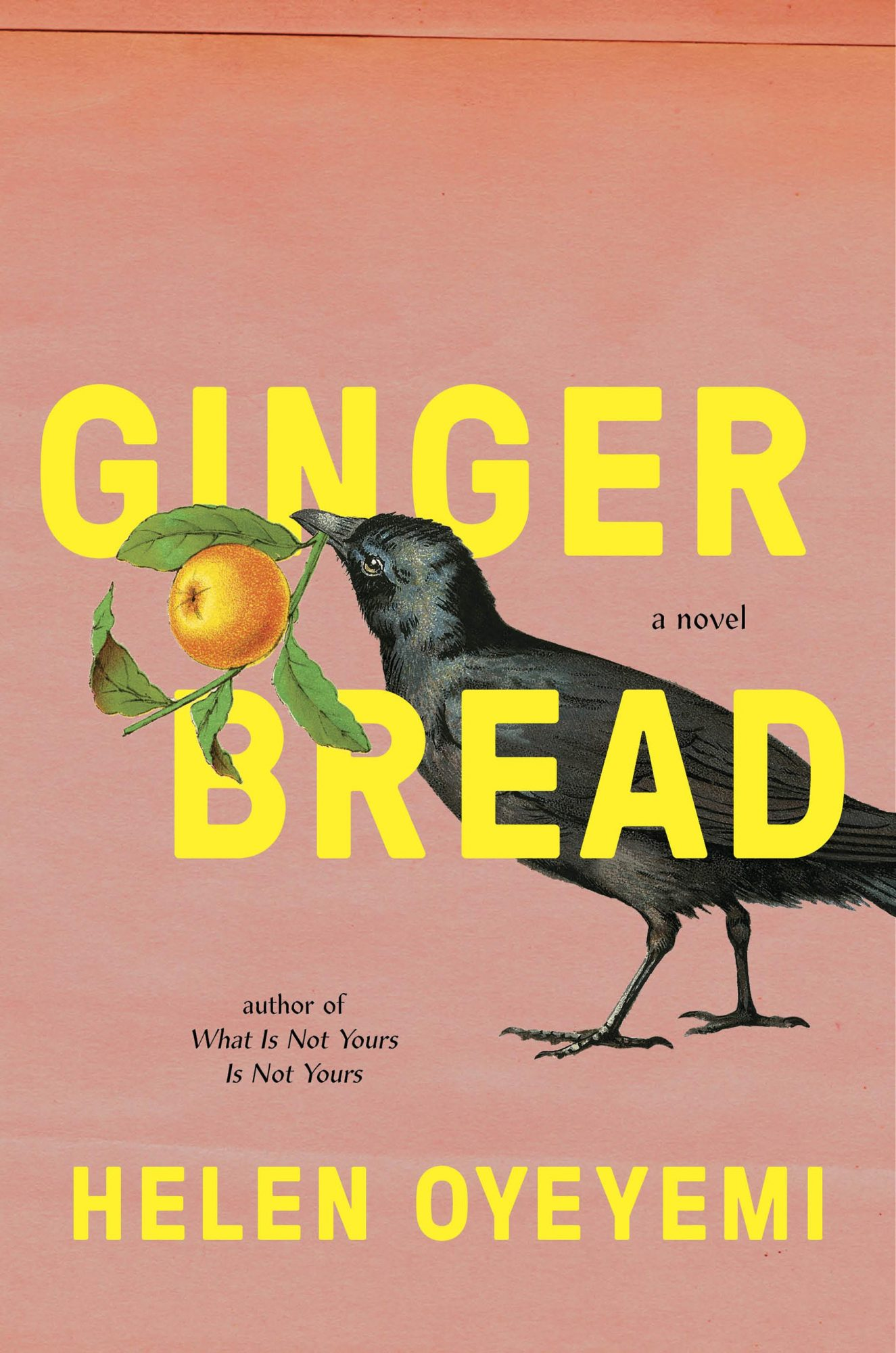 Helen Oyeyemi, GingerbreadCredit: Riverhead Books