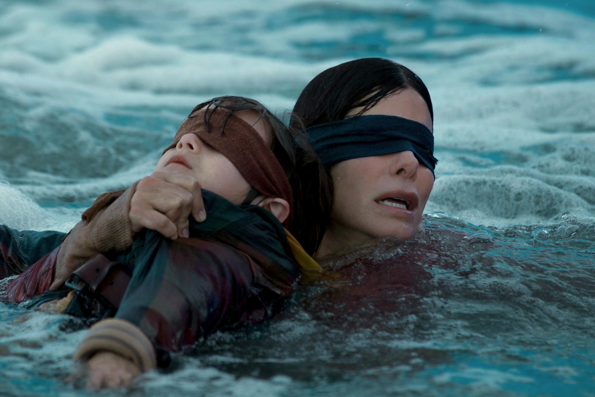 Bird Box directed by Susanne Bier