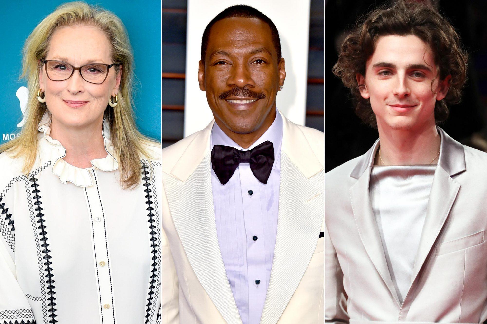 Meryl Streep / Eddie Murphy / Timothee Chalamet