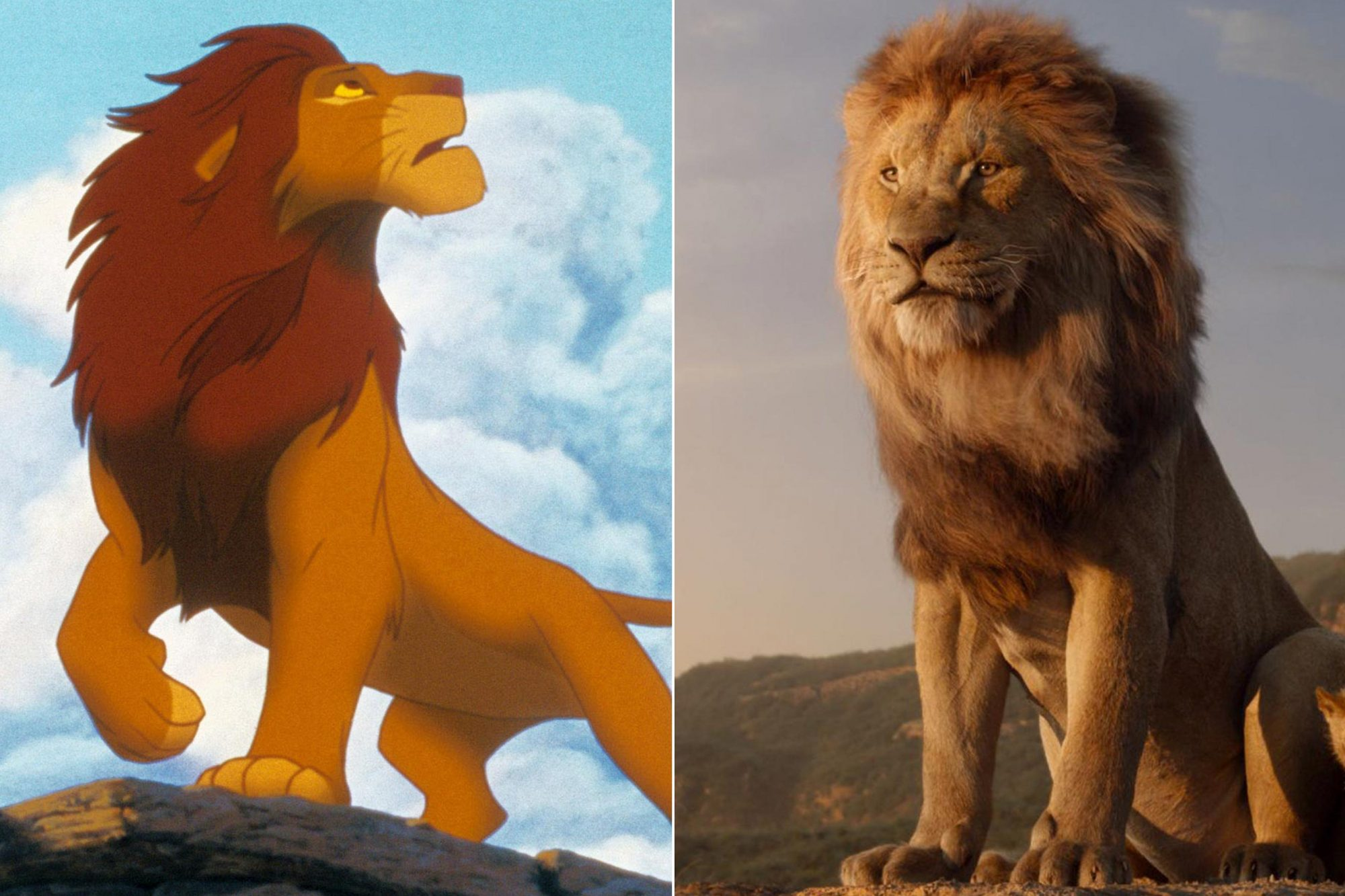 """THE LION KING, 1994. ©Buena Vista Pictures/Courtesy Everett Collection THE LION KING - Featuring the voices of James Earl Jones as Mufasa, and JD McCrary as Young Simba, Disney's """"The Lion King"""" is directed by Jon Favreau. In theaters July 29, 2019. © 2019 Disney Enterprises, Inc. All Rights Reserved."""