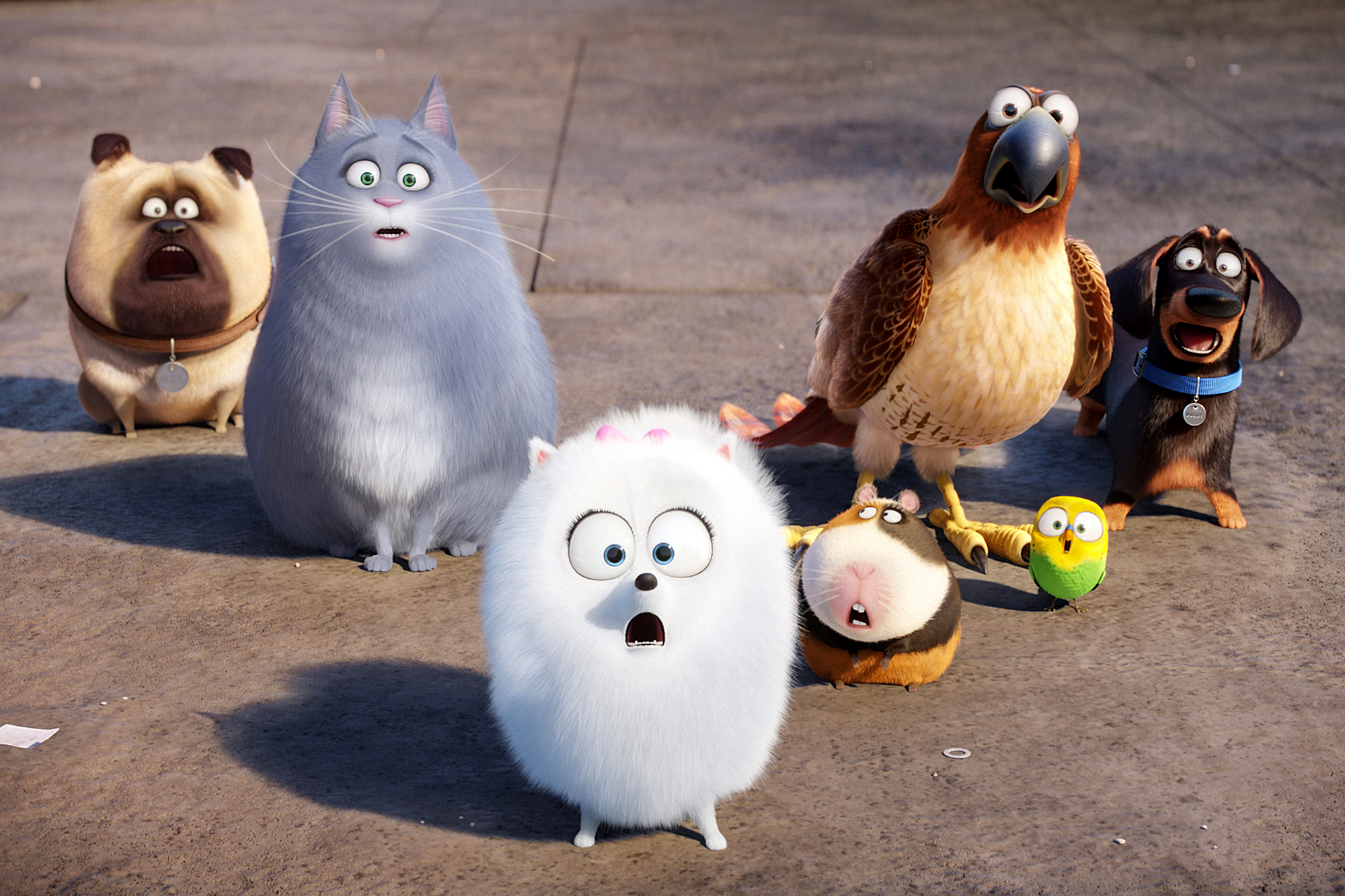 Film Title: The Secret Life of Pets