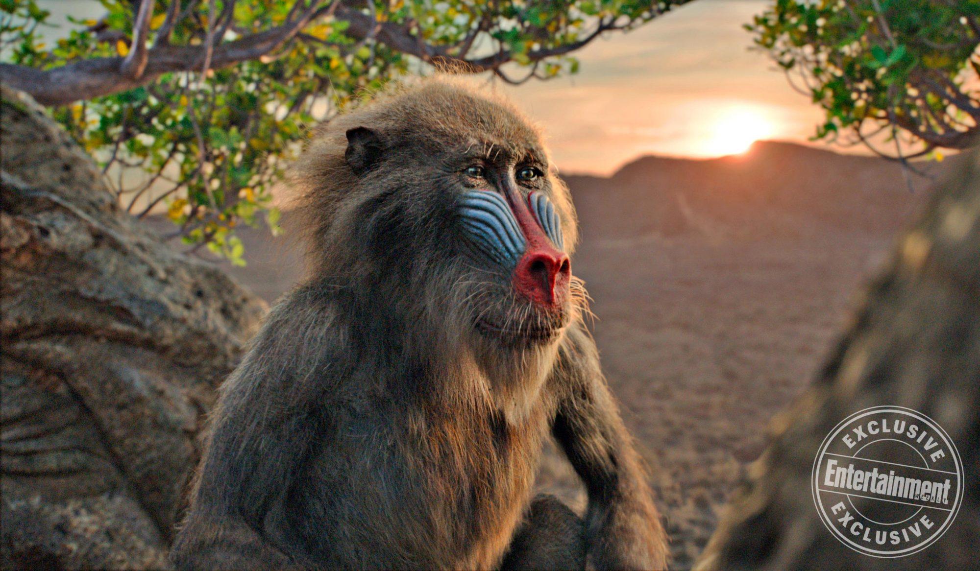 THE LION KINGRafiki (voiced by John Kani)