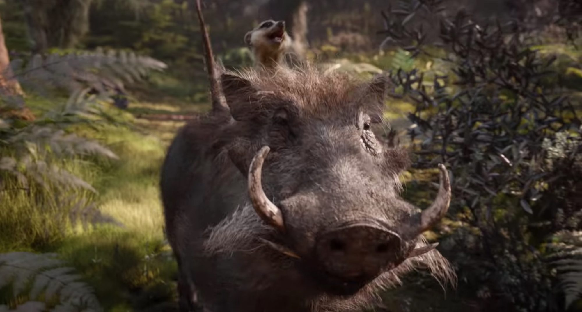 timon-pumbaa-trailer