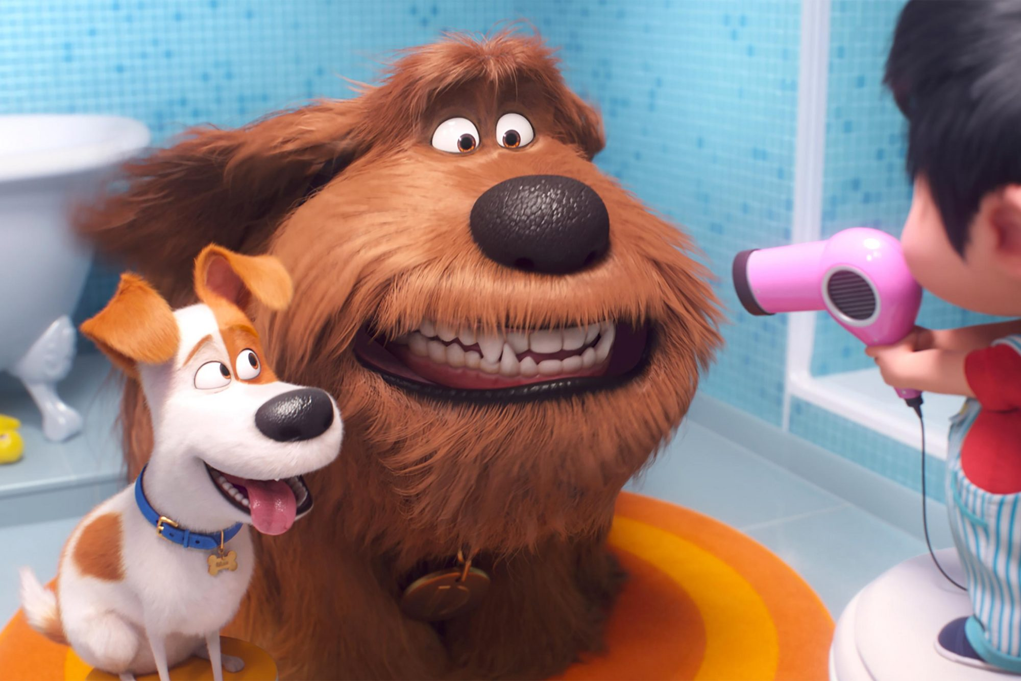 The Secret Life of Pets 2 (from left) Max (Patton Oswalt), Duke (Eric Stonestreet) and Liam CR: Illumination Entertainment/Universal Pictures
