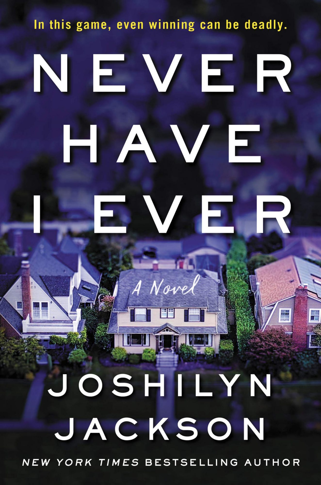 Never Have I Ever (2019)Author: Joshilyn Jackson
