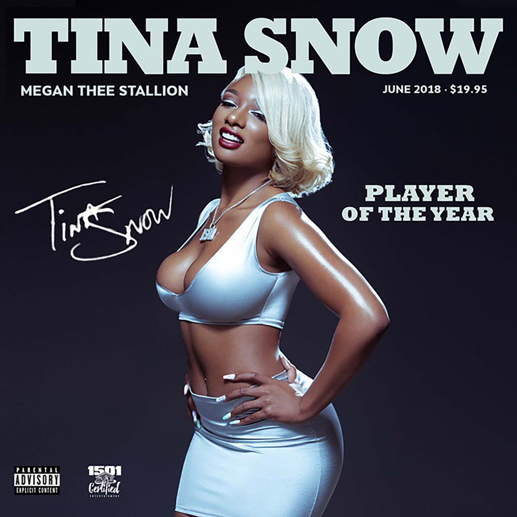 Megan Thee Stallion Tina Snow