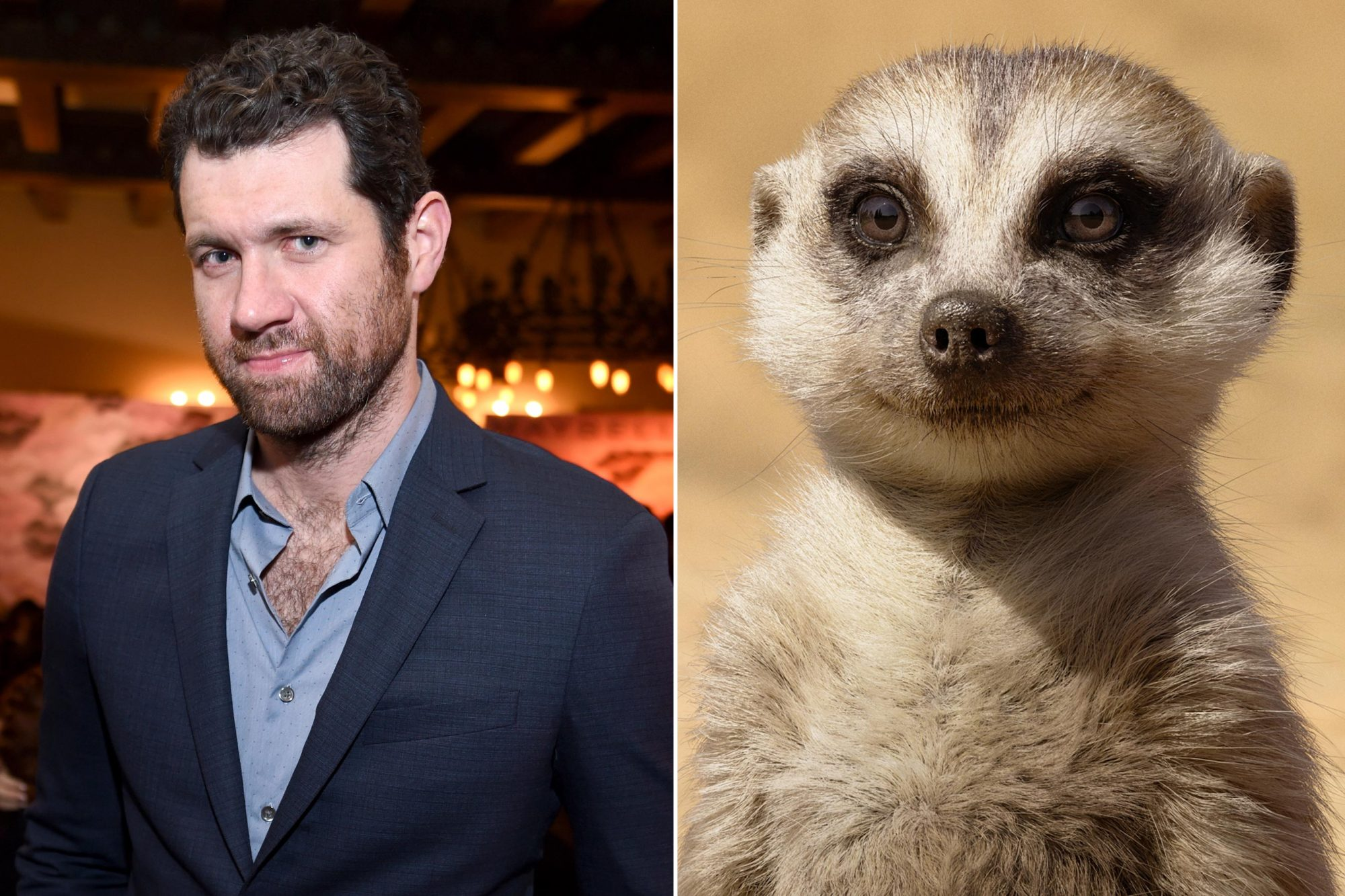 The Lion King Billy Eichner as Timon Actor Billy Eichner attends the Entertainment Weekly Celebration of SAG Award Nominees sponsored by Maybelline New York at Chateau Marmont on January 28, 2017 in Los Angeles, California. (Photo by Dimitrios Kambouris/Getty Images for Entertainment Weekly)