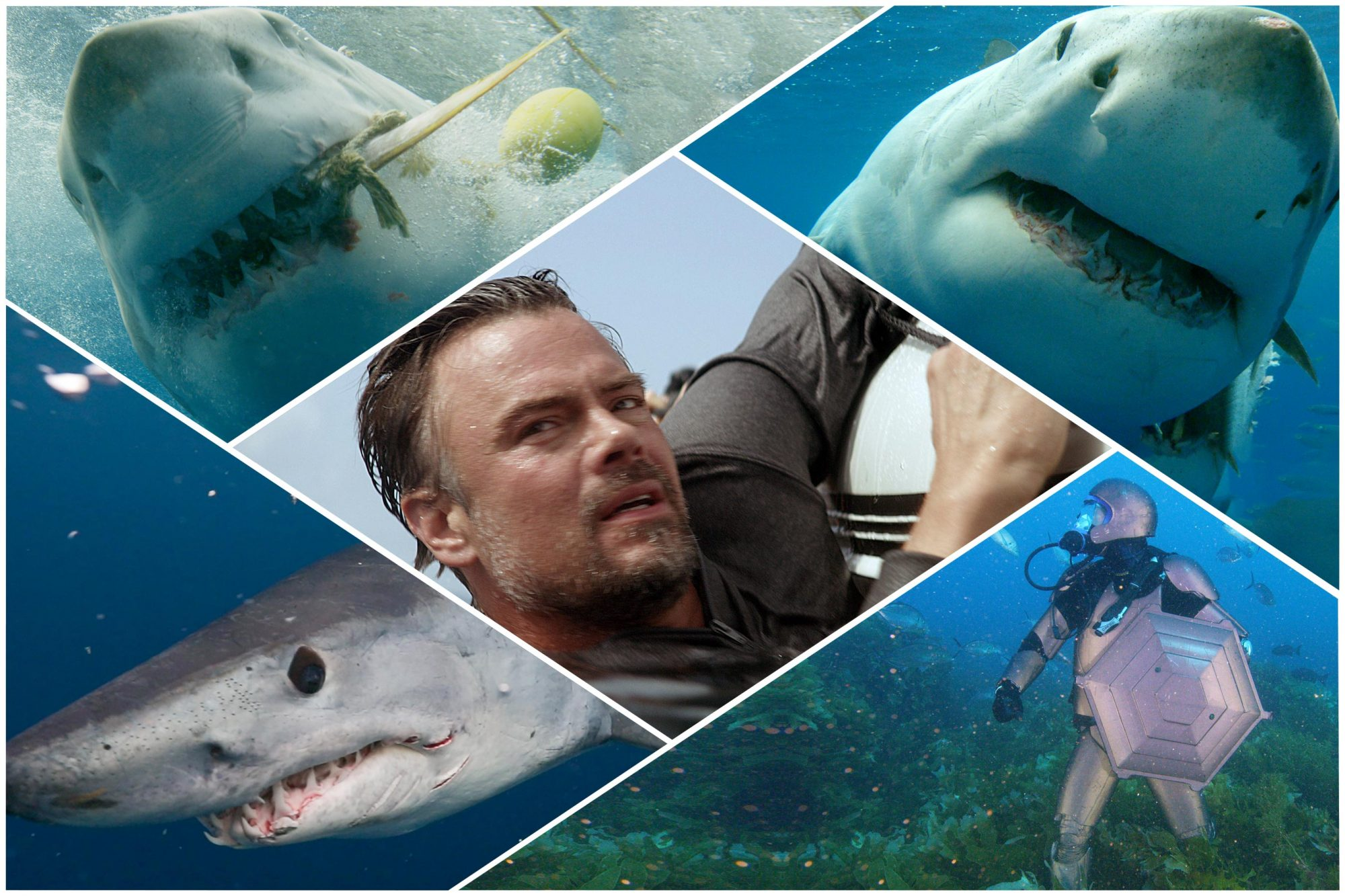 Shark Week 2019: Your guide to all 18 programs