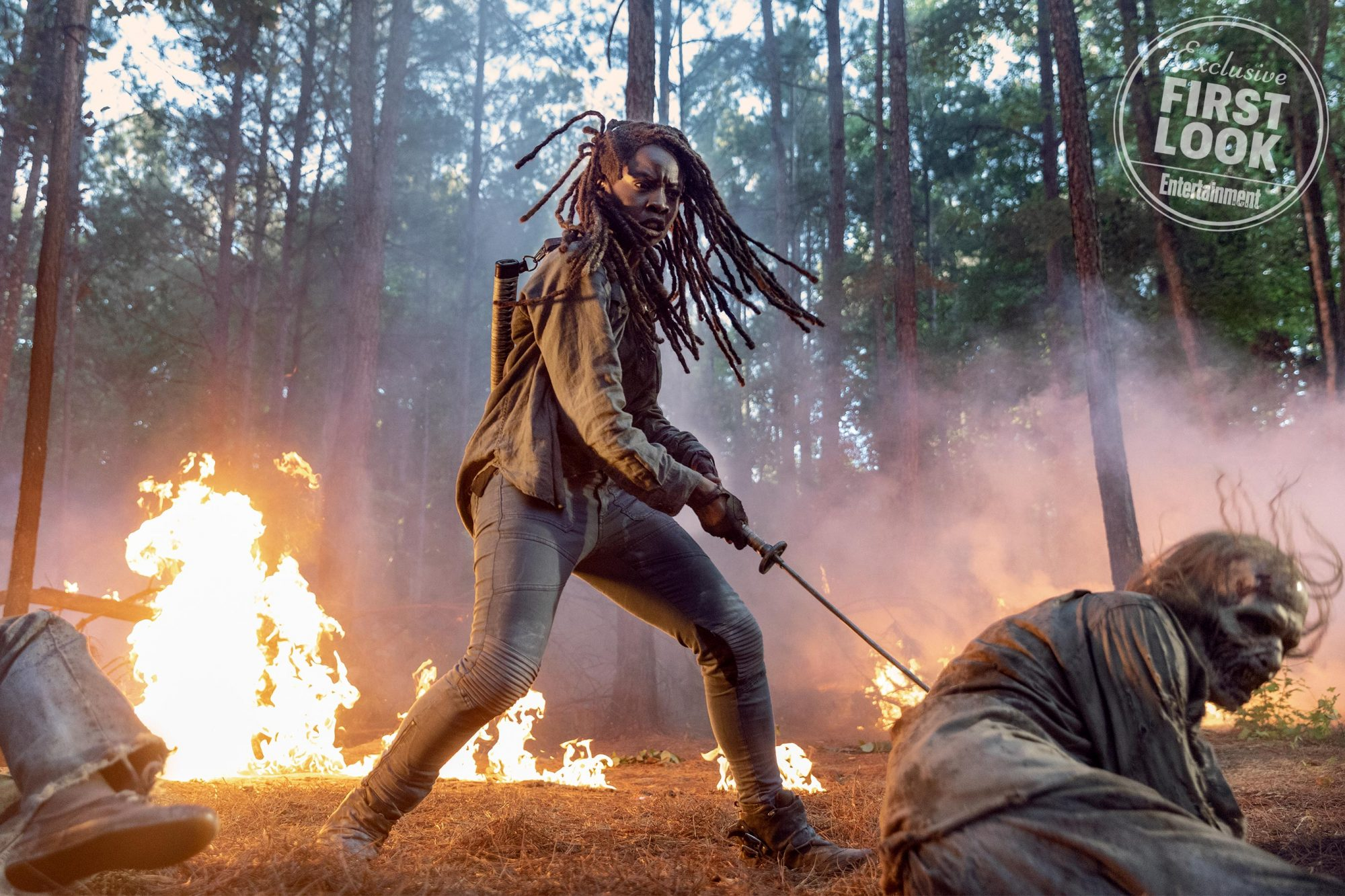 Danai Gurira as Michonne - The Walking Dead _ Season 10, Episode 1 - Photo Credit: Jackson Lee Davis/AMC