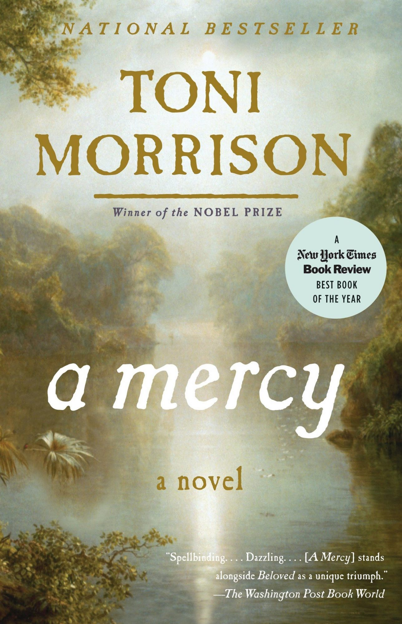 A Mercy by Toni MorrisonPublisher: Vintage
