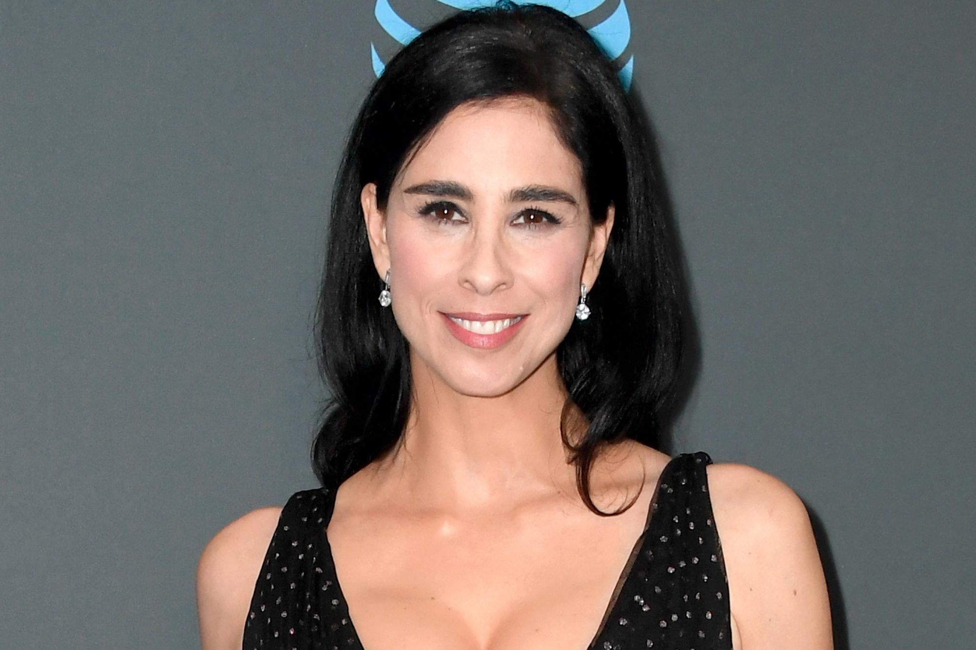 SANTA MONICA, CA - JANUARY 13: Sarah Silverman poses in the press room during the 24th annual Critics' Choice Awards at Barker Hangar on January 13, 2019 in Santa Monica, California. (Photo by Frazer Harrison/Getty Images)