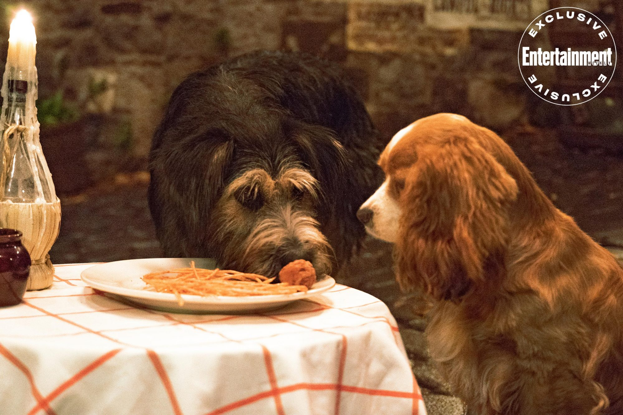 How The Live Action Lady And The Tramp Found Its Canine Costars Ew Com