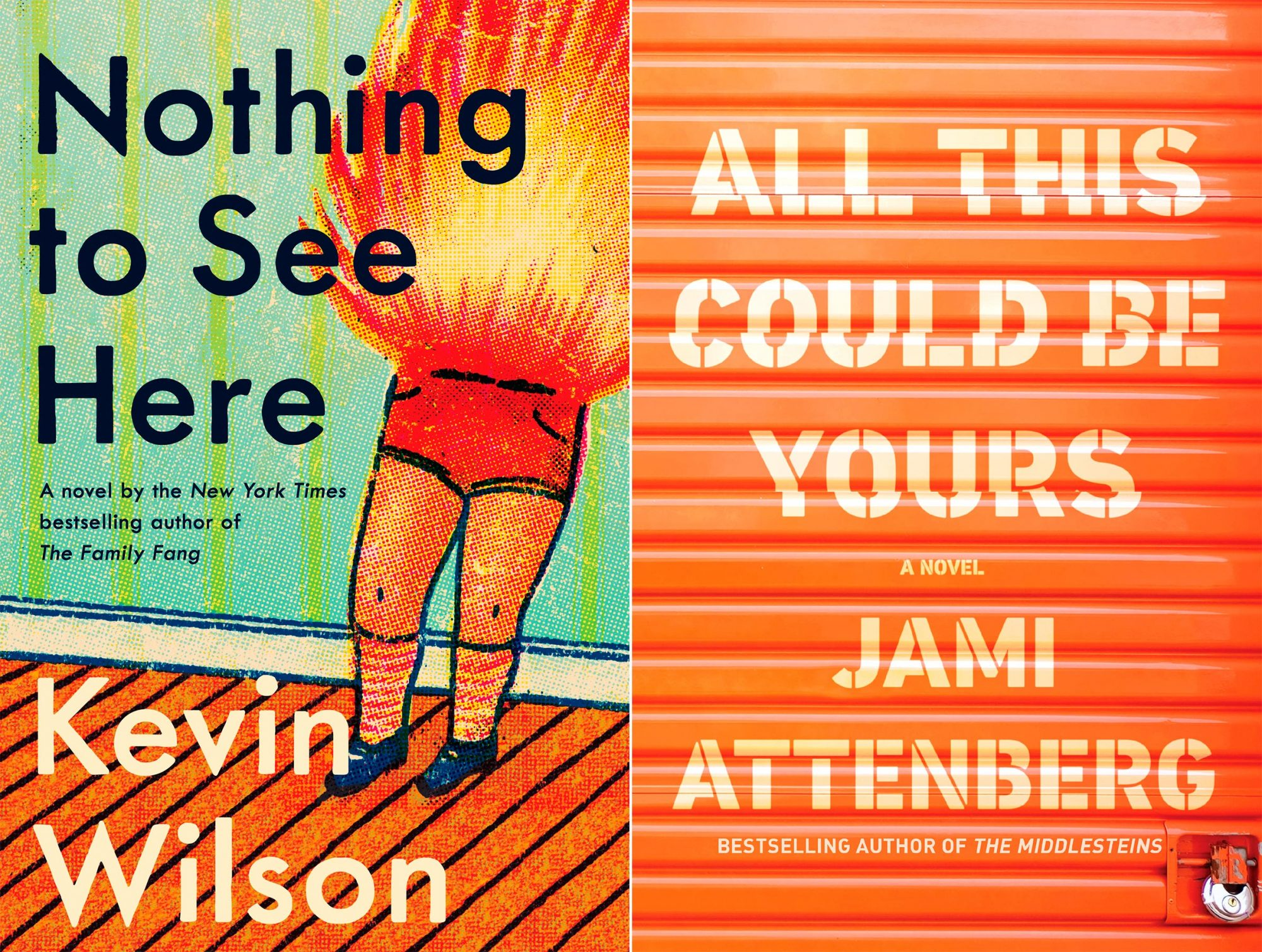 Nothing to See Here by Kevin Wilson All This Could Be Yours by Jami Attenberg