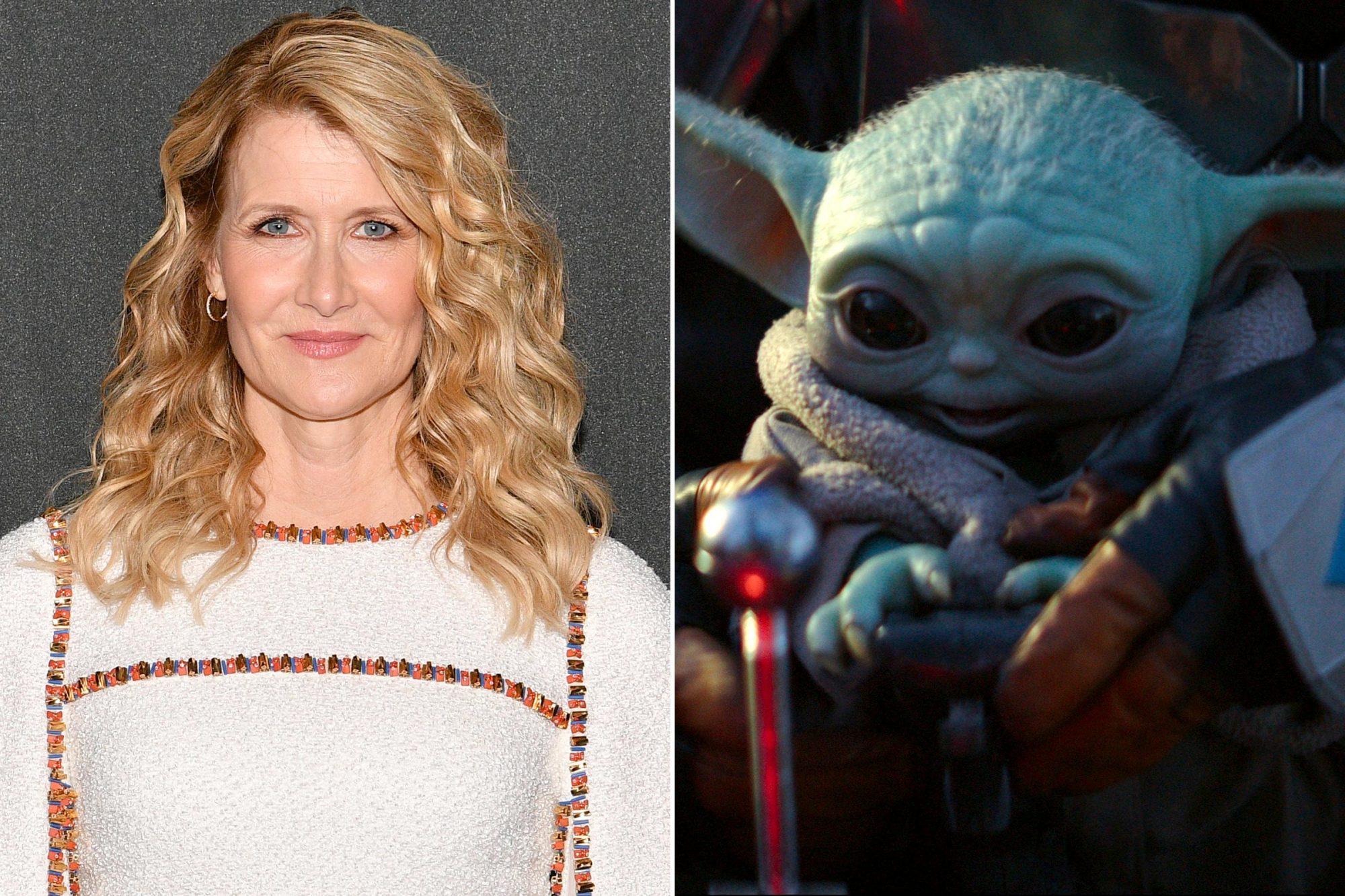 Laura Dern; Baby Yoda