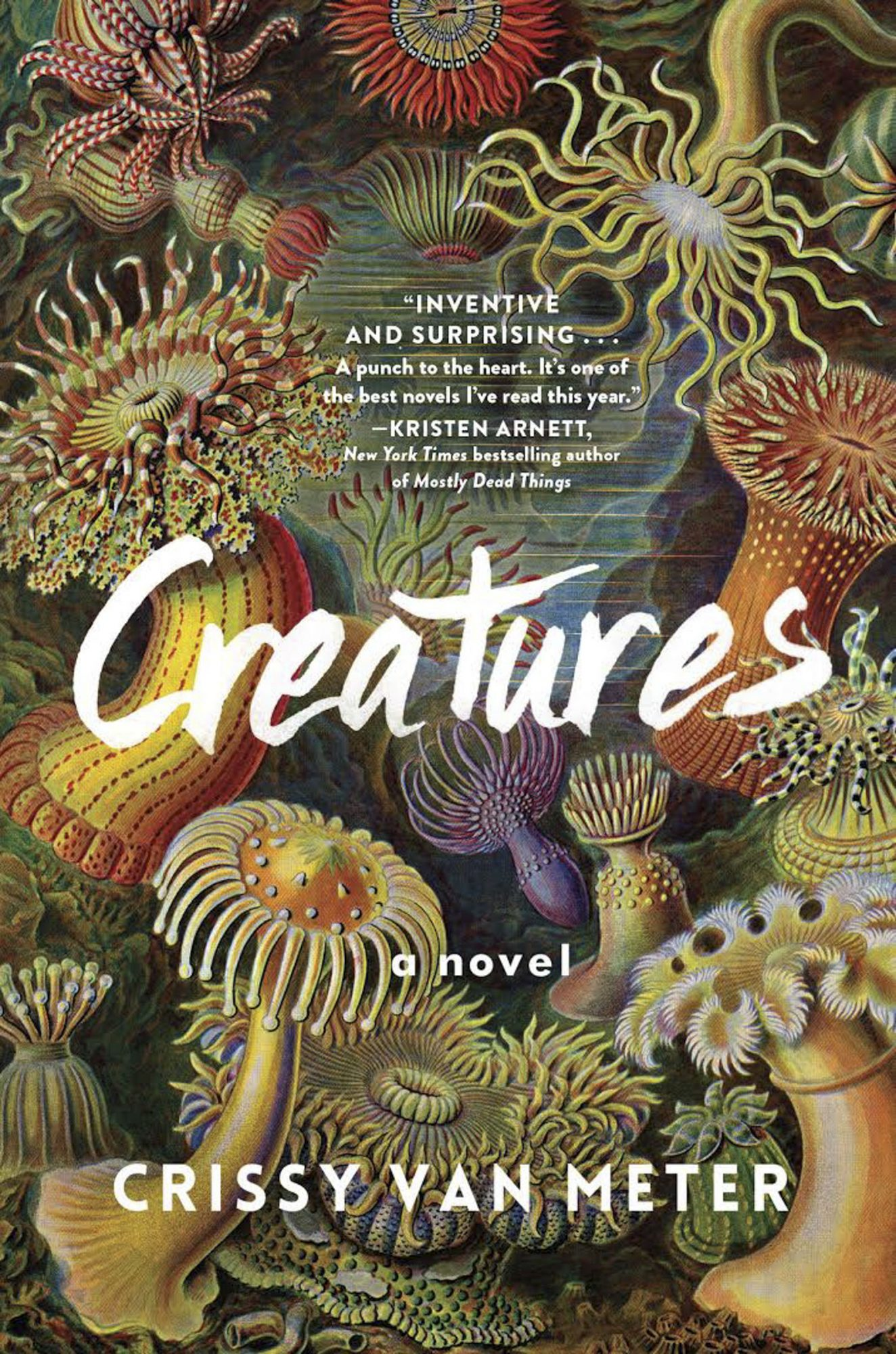 Creatures by Crissy Van MeterCR: Algonquin Books