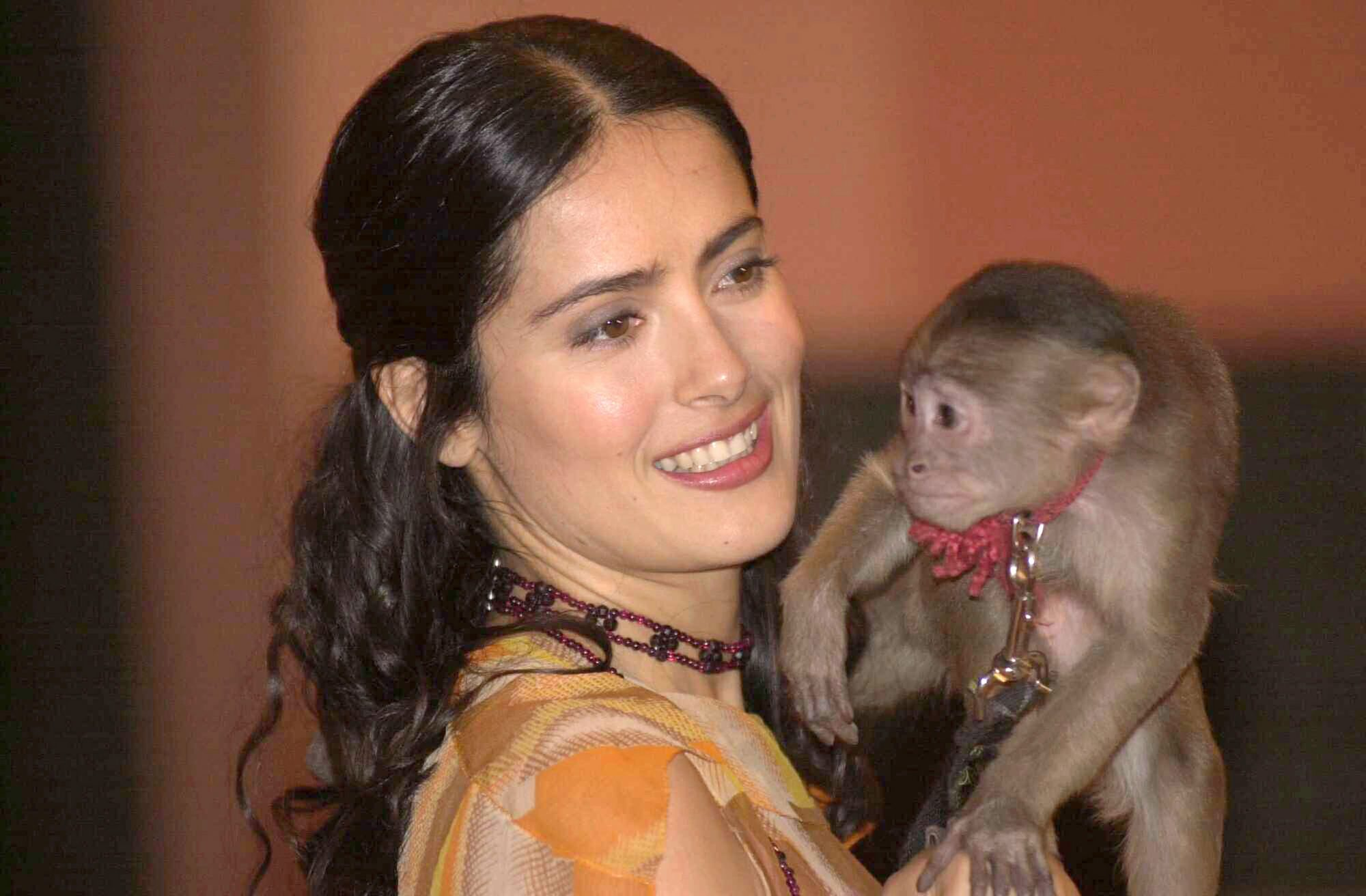 mexican-actress-salma-hayek-holds-tyson-the-spider-monkey-.jpg