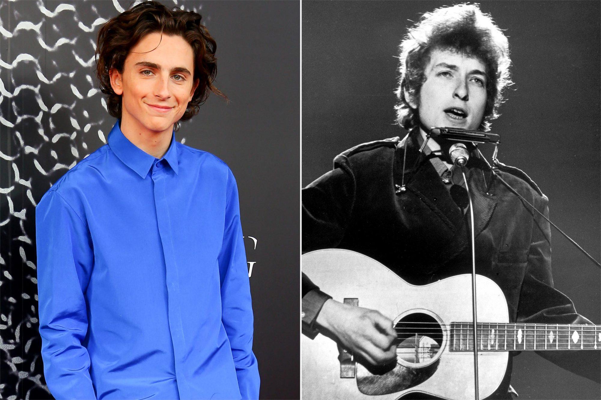 Timothee Chalamet / Bob Dylan