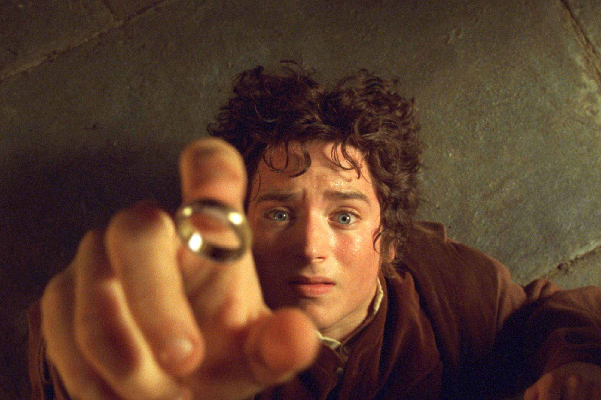 Lord of the Rings: The Fellowship of the Ring (2001)Elijah Wood