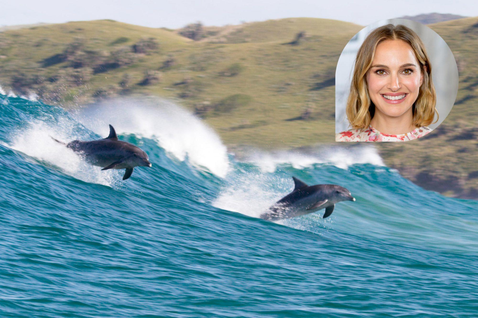 Dolphin Reef; Natalie Portman