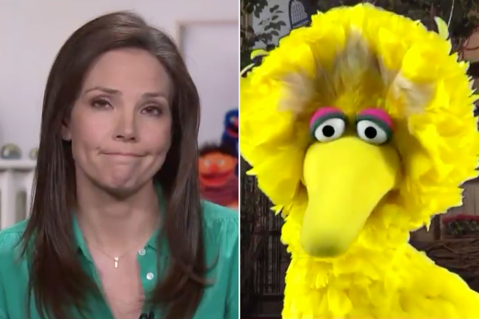 Sesame Street on CNN