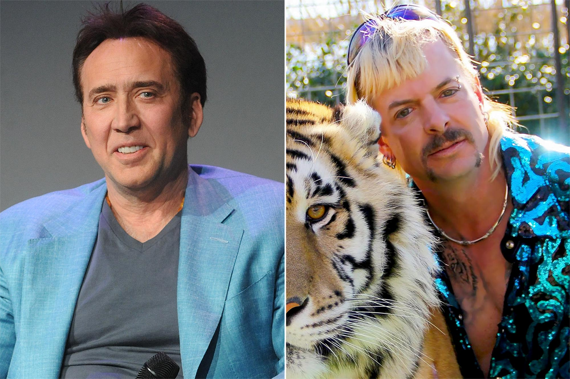 Nicolas Cage; Tiger King